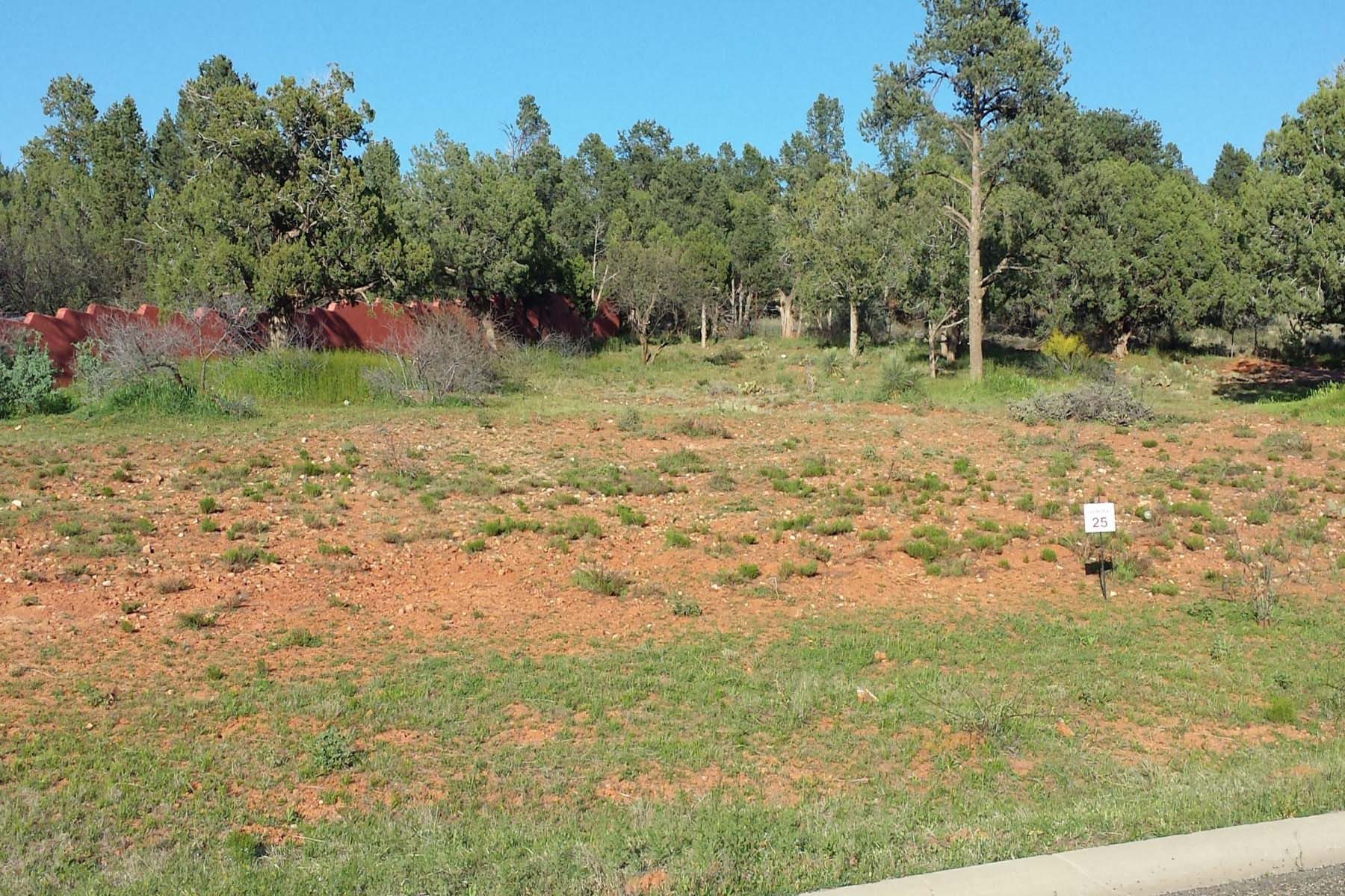 土地 为 销售 在 Beautiful Vacant lot with forest access. 230 Piedras Del Norte #3 Sedona, 亚利桑那州 86351 美国