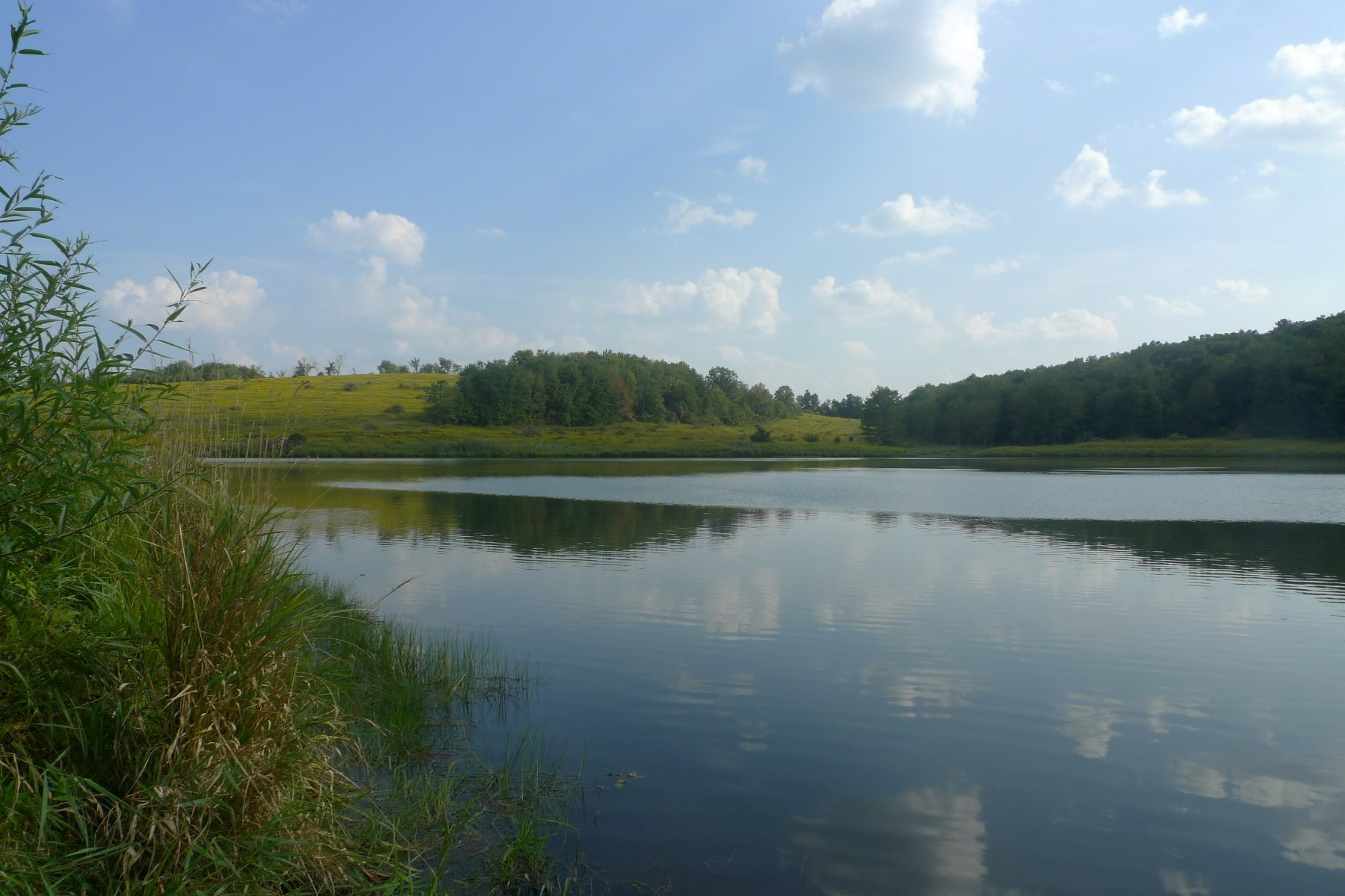 Land for Sale at Meadows & Water 3-C Sigler Road Pine Plains, New York, 12567 United States