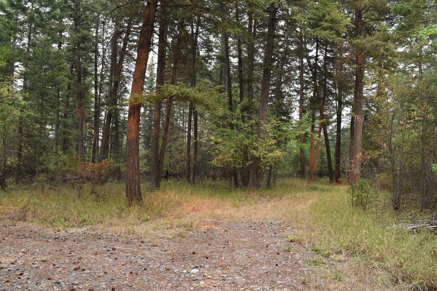 Property For Sale at Jorgenson Trail Lot