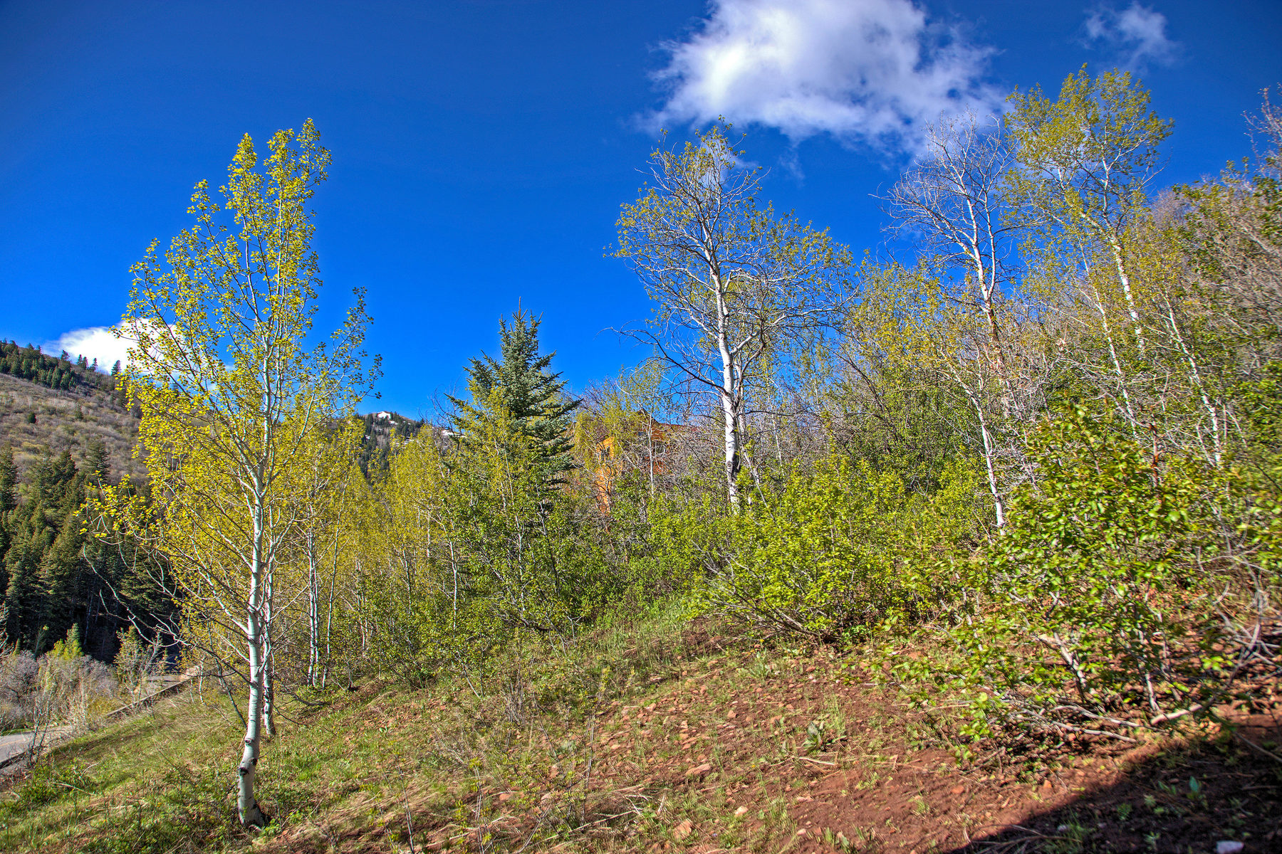 Terreno por un Venta en Uphill Lot With Great Views 7091 N Stagecoach Dr Park City, Utah, 84098 Estados Unidos
