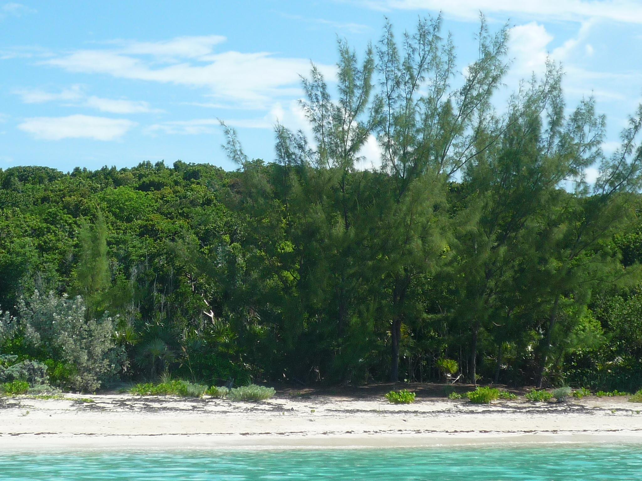 Additional photo for property listing at Rose Island Beach Lots Rose Island, Nassau And Paradise Island Bahamas
