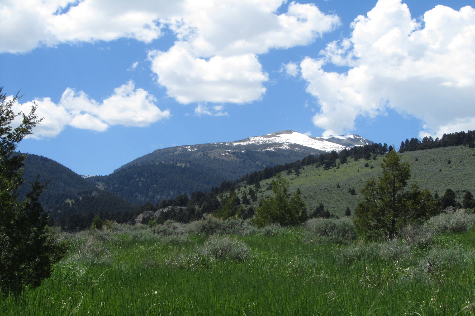 Land for Sale at Elk View Road, Lot 11 McAllister, Montana, 59740 United States