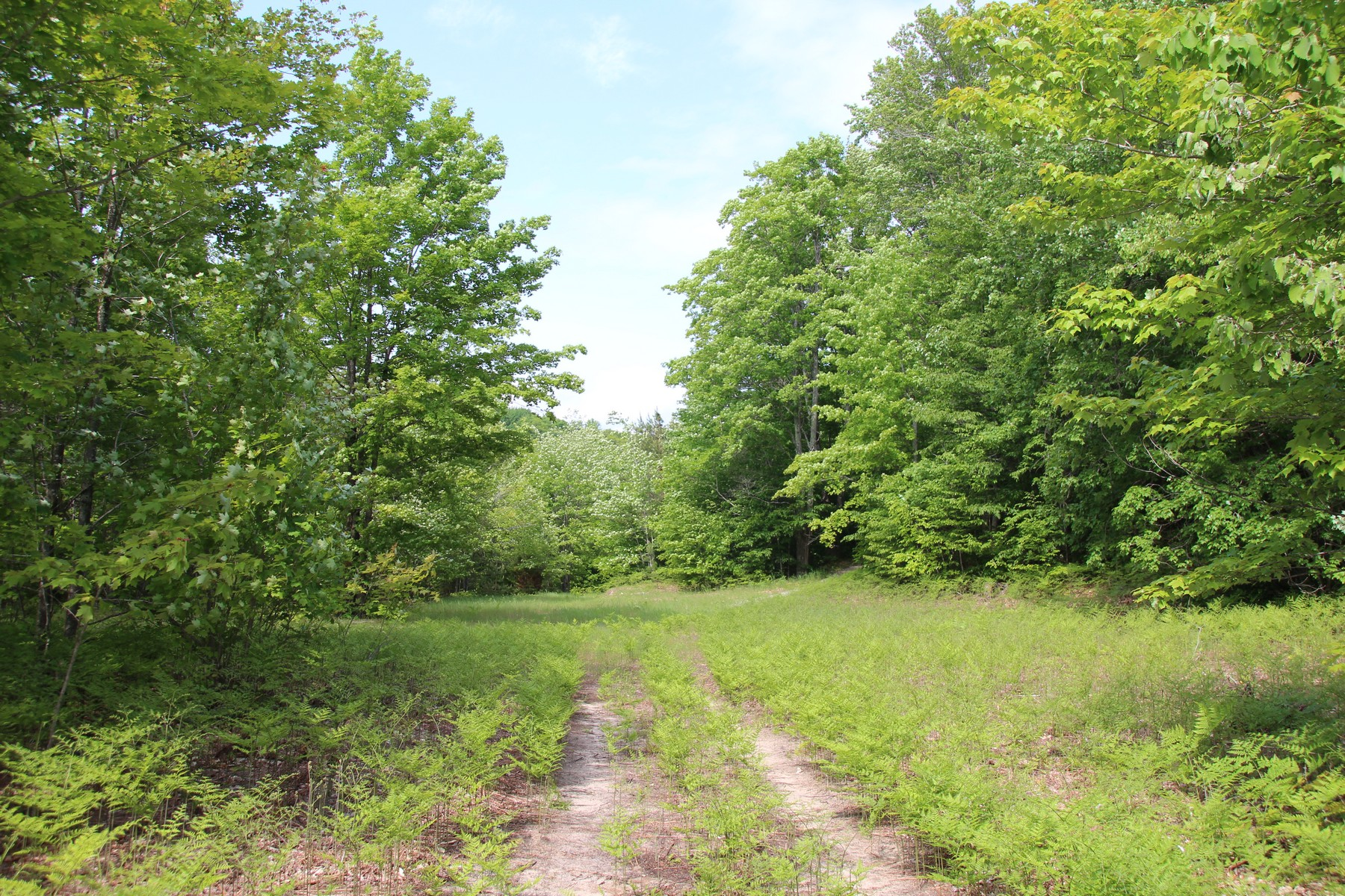 Land for Sale at 3251 Russet Road Petoskey, Michigan, 49770 United States