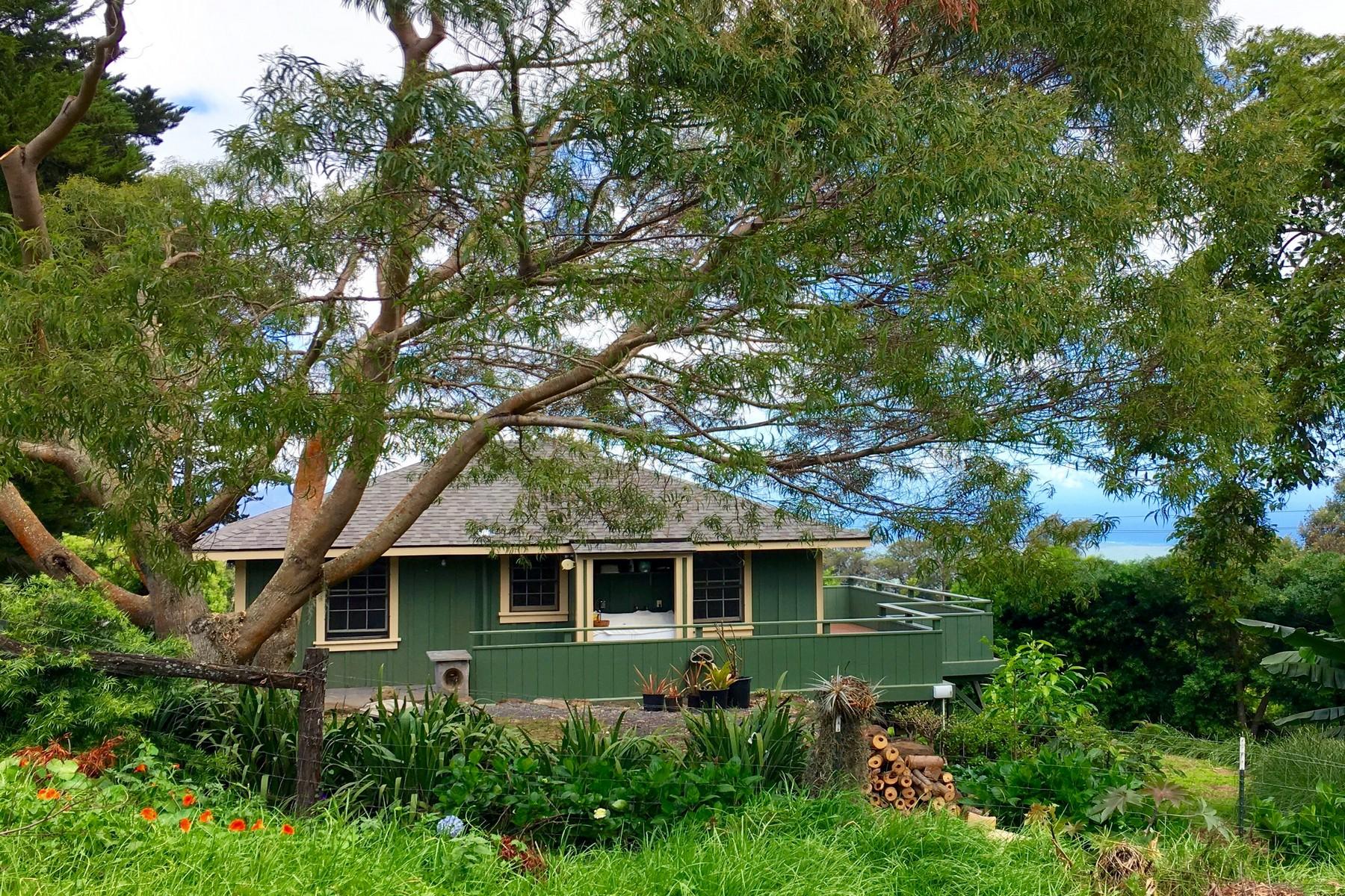 Einfamilienhaus für Verkauf beim Sweet & Charming Kula Plantation House 91 Waiakoa Road Kula, Hawaii, 96790 Vereinigte Staaten