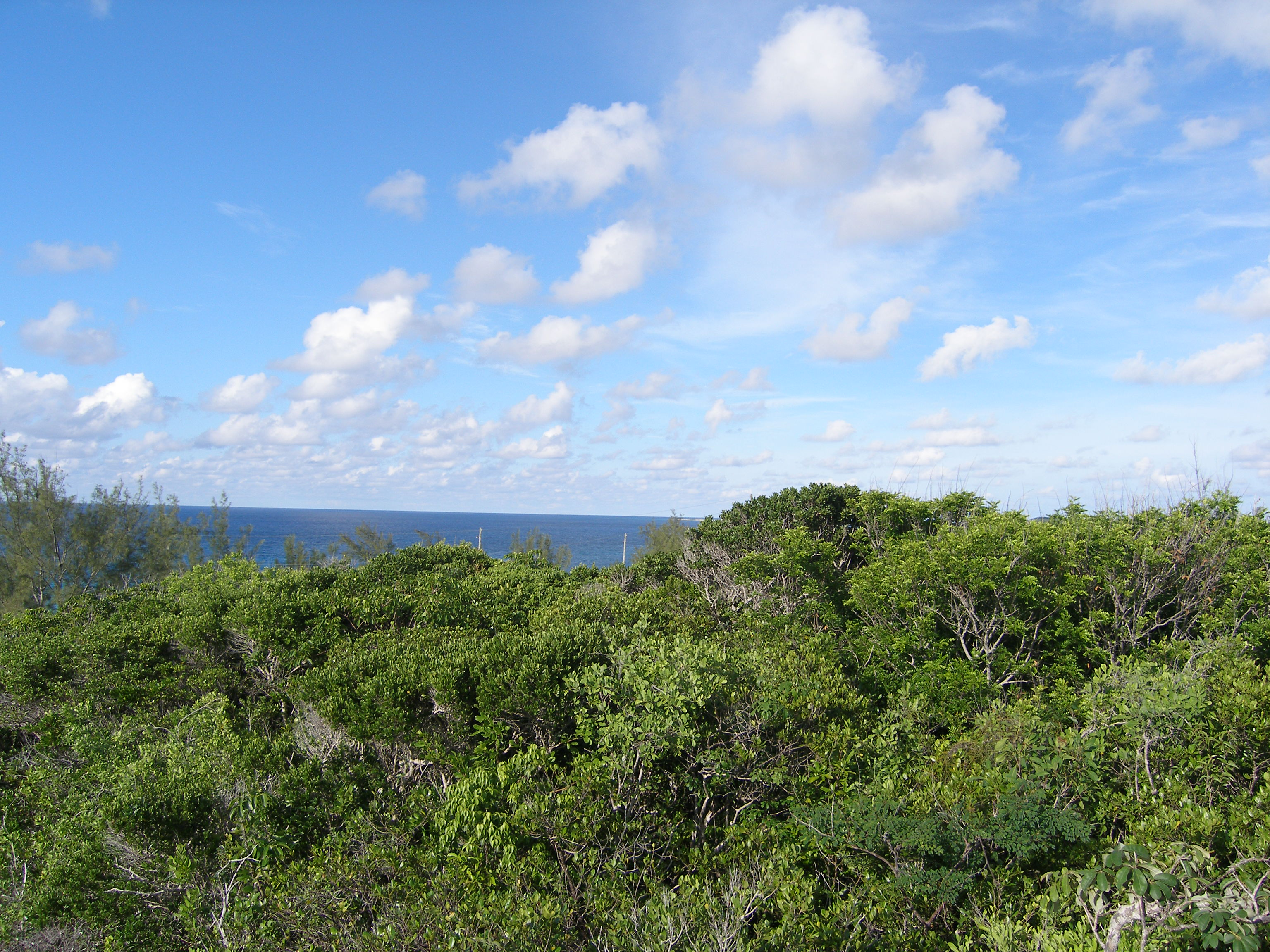 Land for Sale at Residential Lot Rainbow Bay, Eleuthera Bahamas