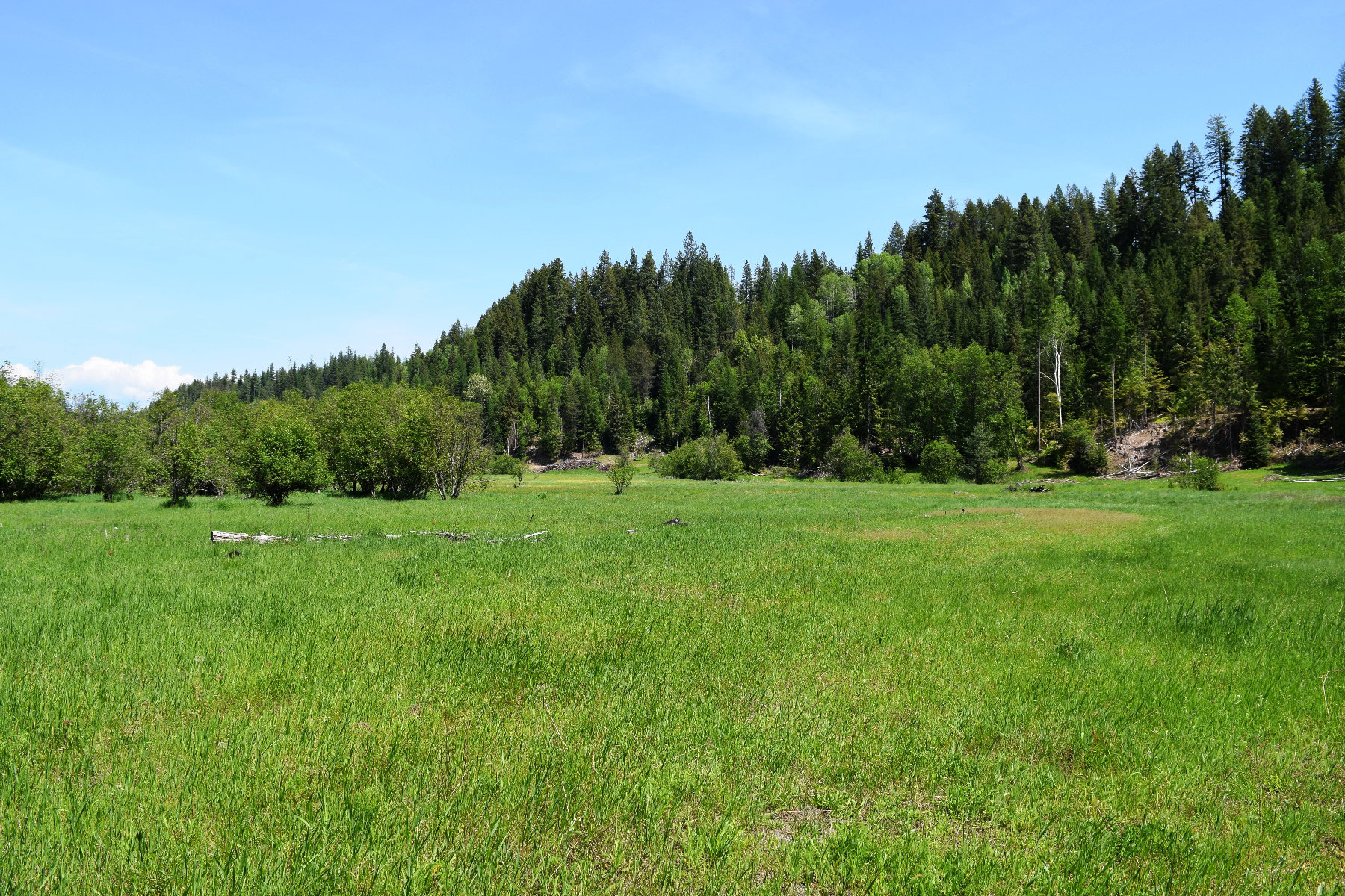 Property Of Private 362 Acres and two homes