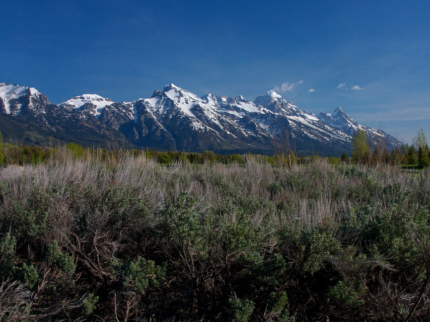 Terreno per Vendita alle ore Premier Site at the Base of Tetons 690 W. Woodside Drive North Jackson Hole, Wyoming 83001 Stati Uniti