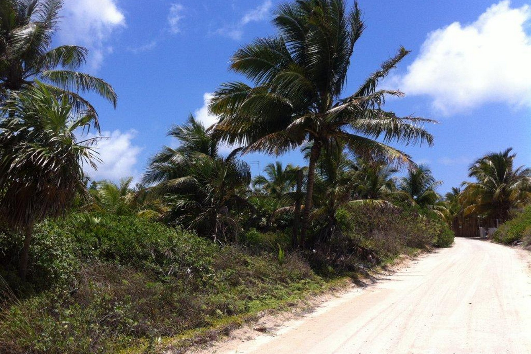Additional photo for property listing at LOTES CON FRENTE DE PLAYA EN XCALAK Beachfront Lots in Xcalak Lote número OCHO y NUEVE Xcalak, Quintana Roo 77940 México