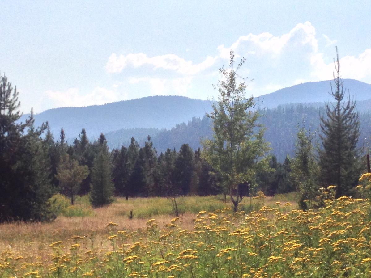 Land für Verkauf beim Beautiful McArthur Lake Area NNA Sitka Rd Naples, Idaho 83847 Vereinigte Staaten
