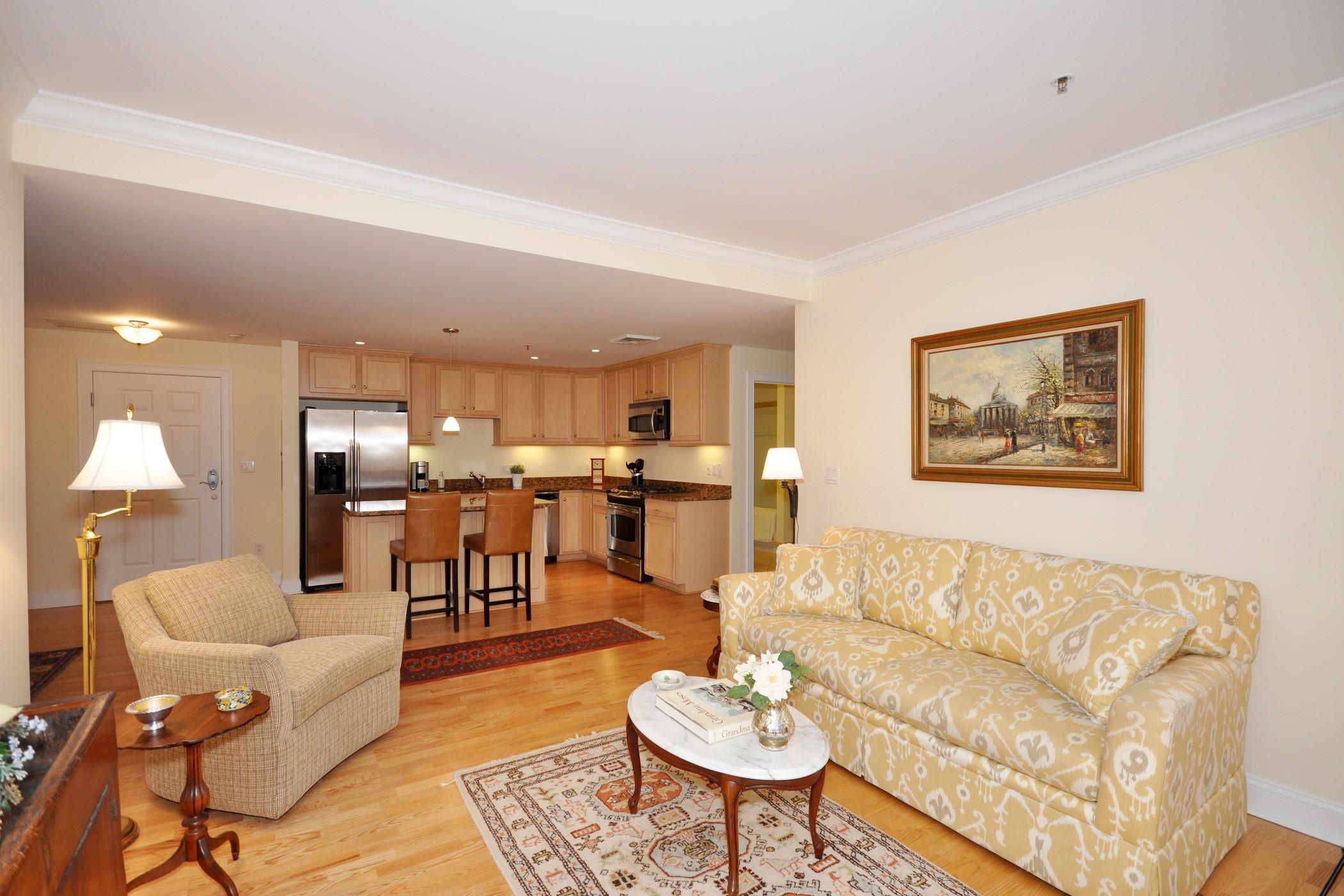 共管物業 為 出售 在 Concord Commons 95 Conant Street - unit 219 Concord, 麻塞諸塞州, 01742 美國
