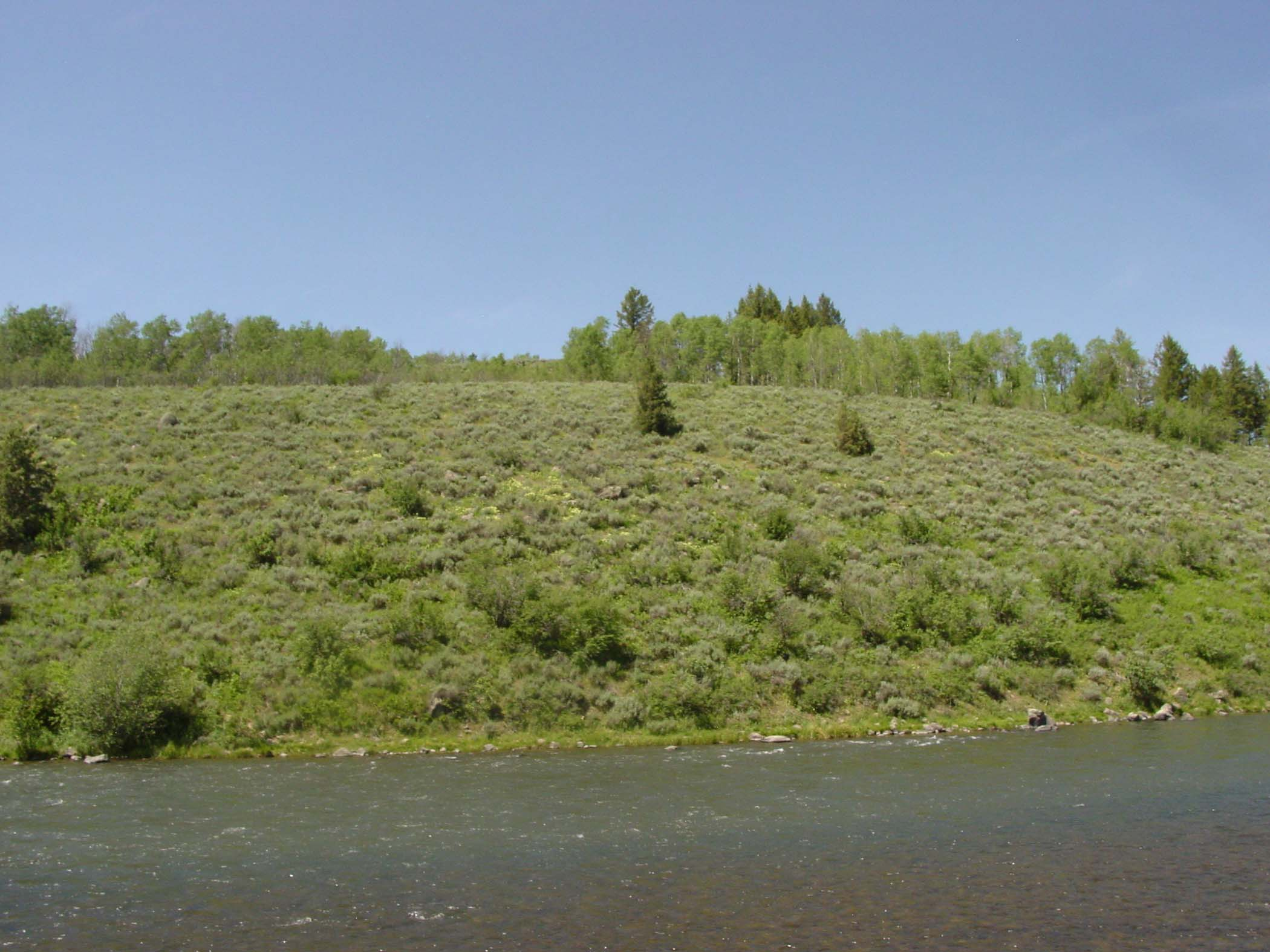 Land for Sale at Fronting 2 World Class Rivers 1586 Royal Coachman Drive Idaho, Ashton, Idaho, 83420 Jackson Hole, United States