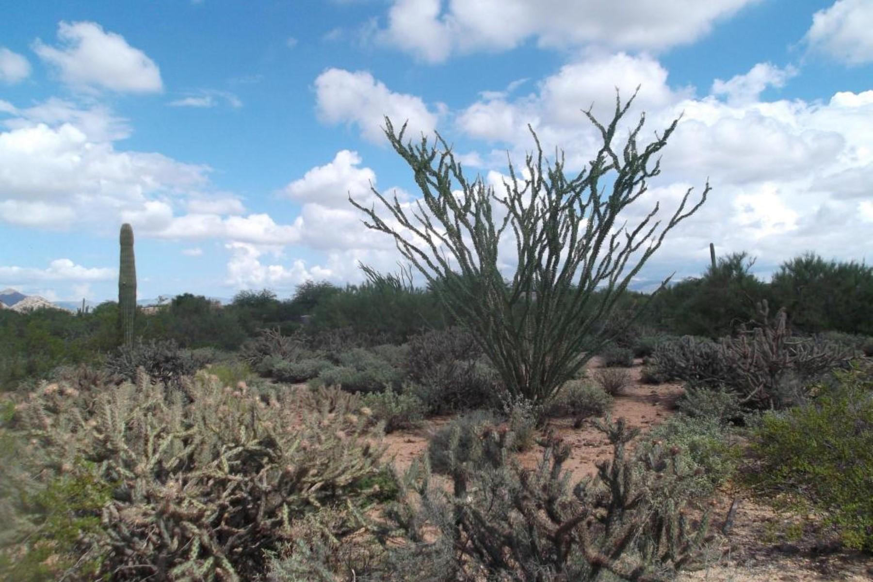 地產 為 出售 在 Located in the guard gated community of Sincuidados. 30600 N PIMA RD 34 Scottsdale, 亞利桑那州 85266 美國