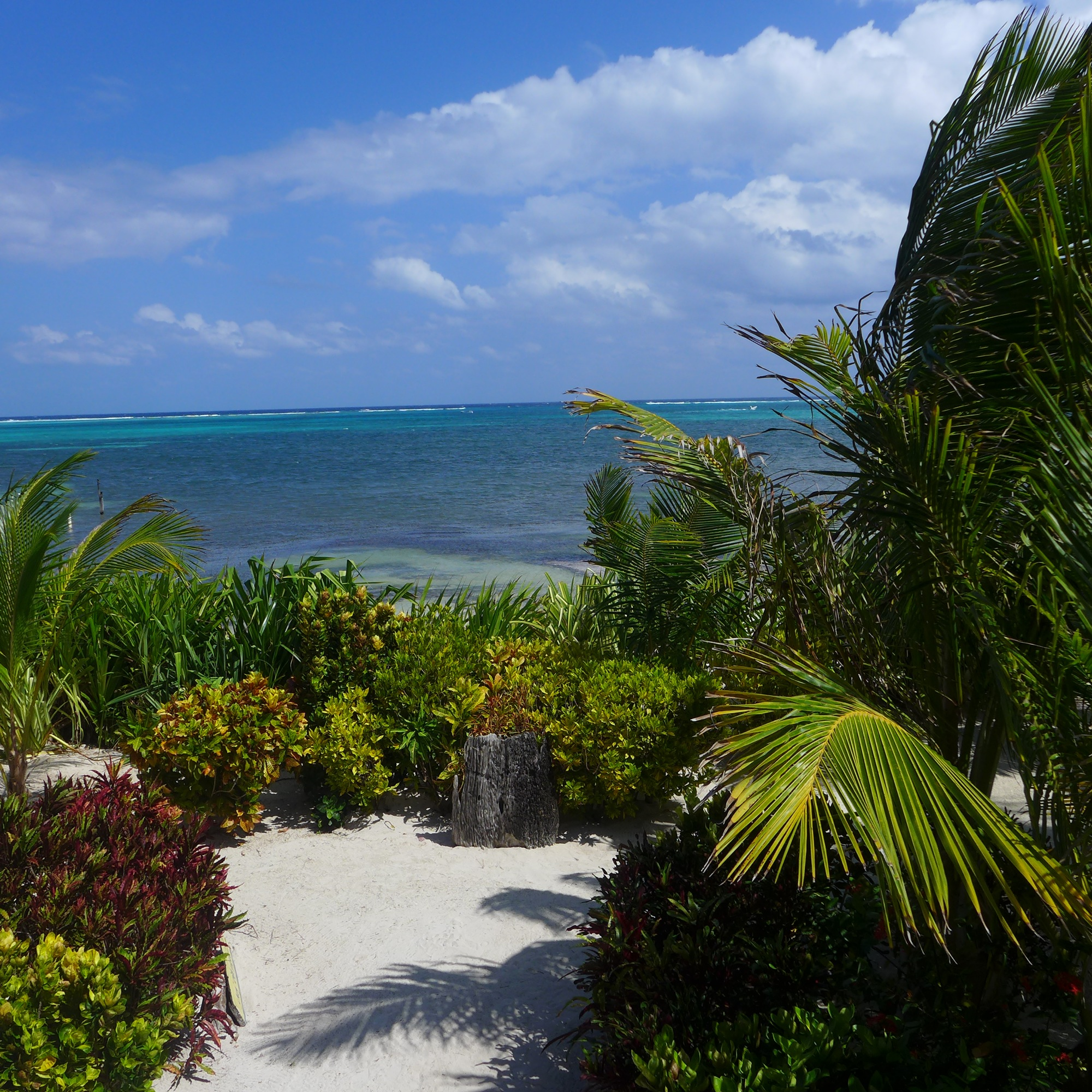 Property Of Calm Caye Villa