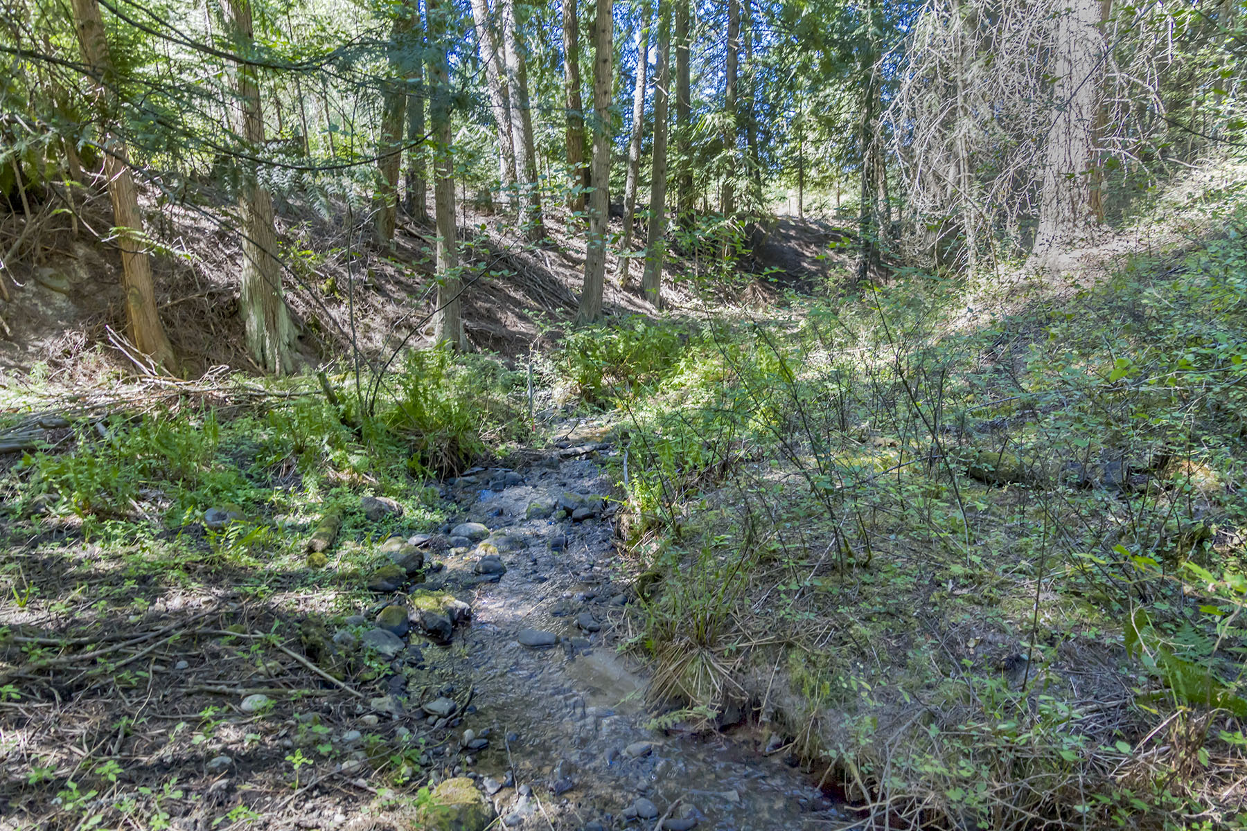Land for Sale at Creek frontage on Strong Creek Lot 8 Sailor Lane Priest River, Idaho 83856 United States