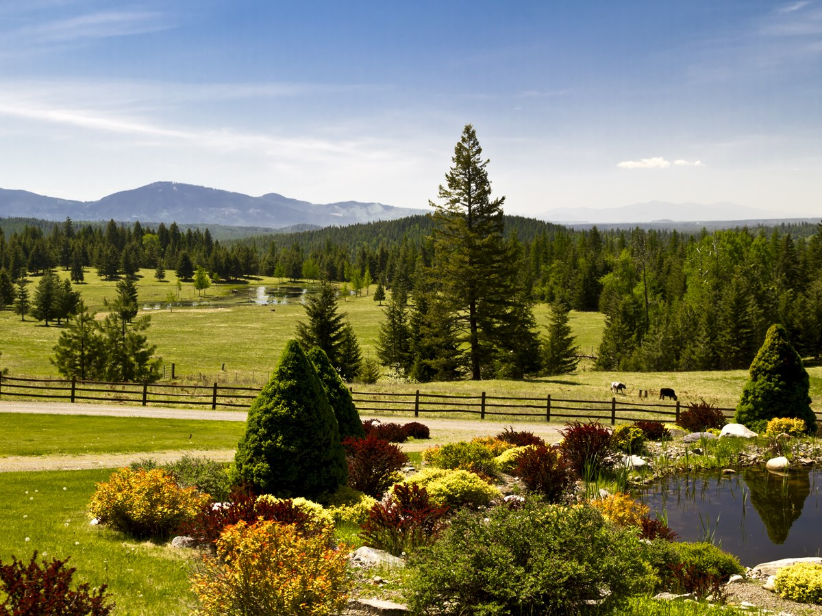 Maison unifamiliale pour l Vente à Scenic Day Star Ranch 4575 Blacktail Road Careywood, Idaho, 83809 États-Unis