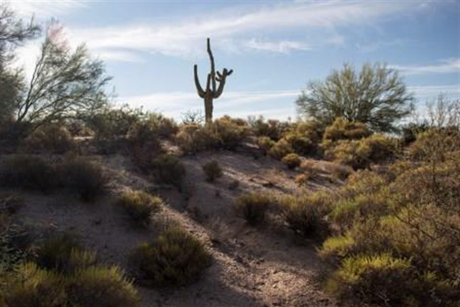 토지 용 매매 에 Non membership lot in Desert Mountain's Village of Gambel Quail 38575 N 97th Way 12 Scottsdale, 아리조나, 85262 미국
