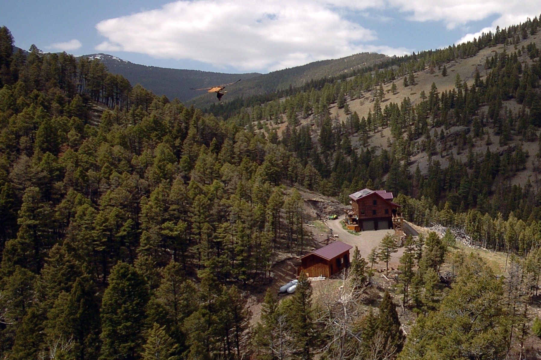 Property For Sale at Private Wolf Creek Homestead