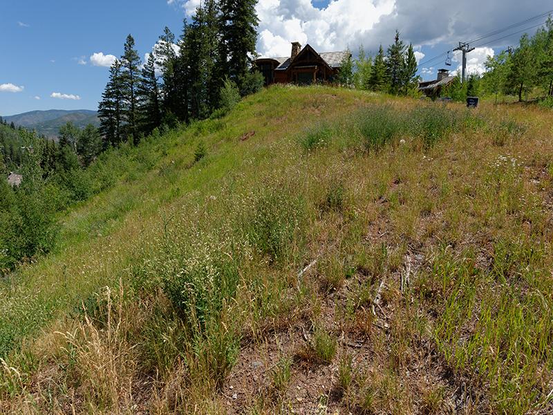 Property Of Last Direct Ski-In/Ski-Out