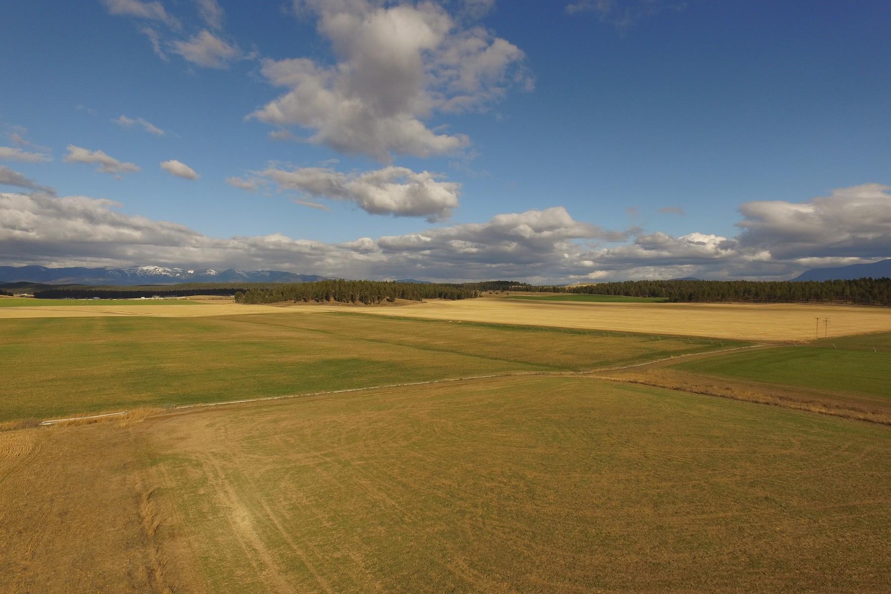 Terreno para Venda às Prairie View Acreage 820 Prairie View Rd Kalispell, Montana 59901 Estados Unidos