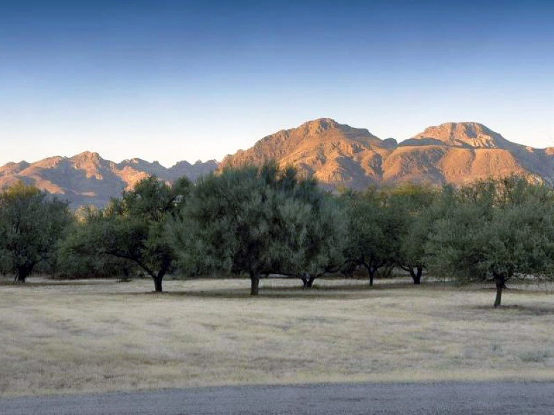 Property For Sale at Elegant Spanish Colonial Home on Private 8.49 Acre Setting in Tubac