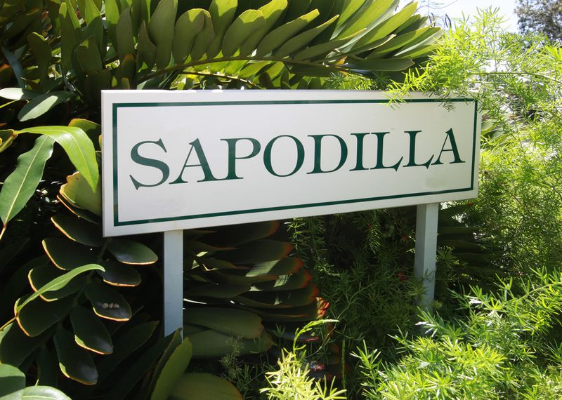 Additional photo for property listing at Sapodilla, Old Fort Bay Islands At Old Fort Bay, 旧福特湾, 新普罗维登斯/拿骚 巴哈马