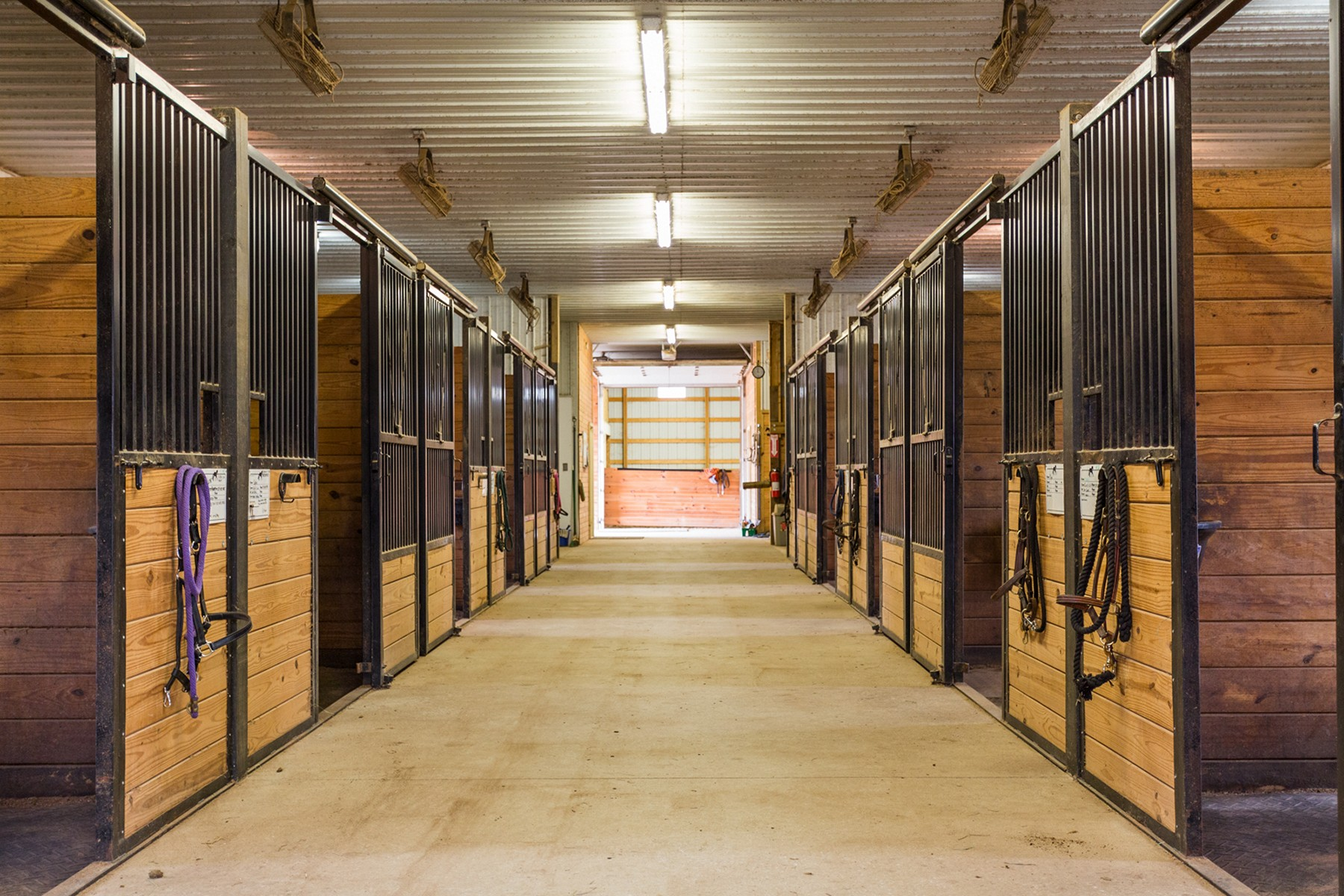 Property For Sale at State of the Art Equestrian Facility