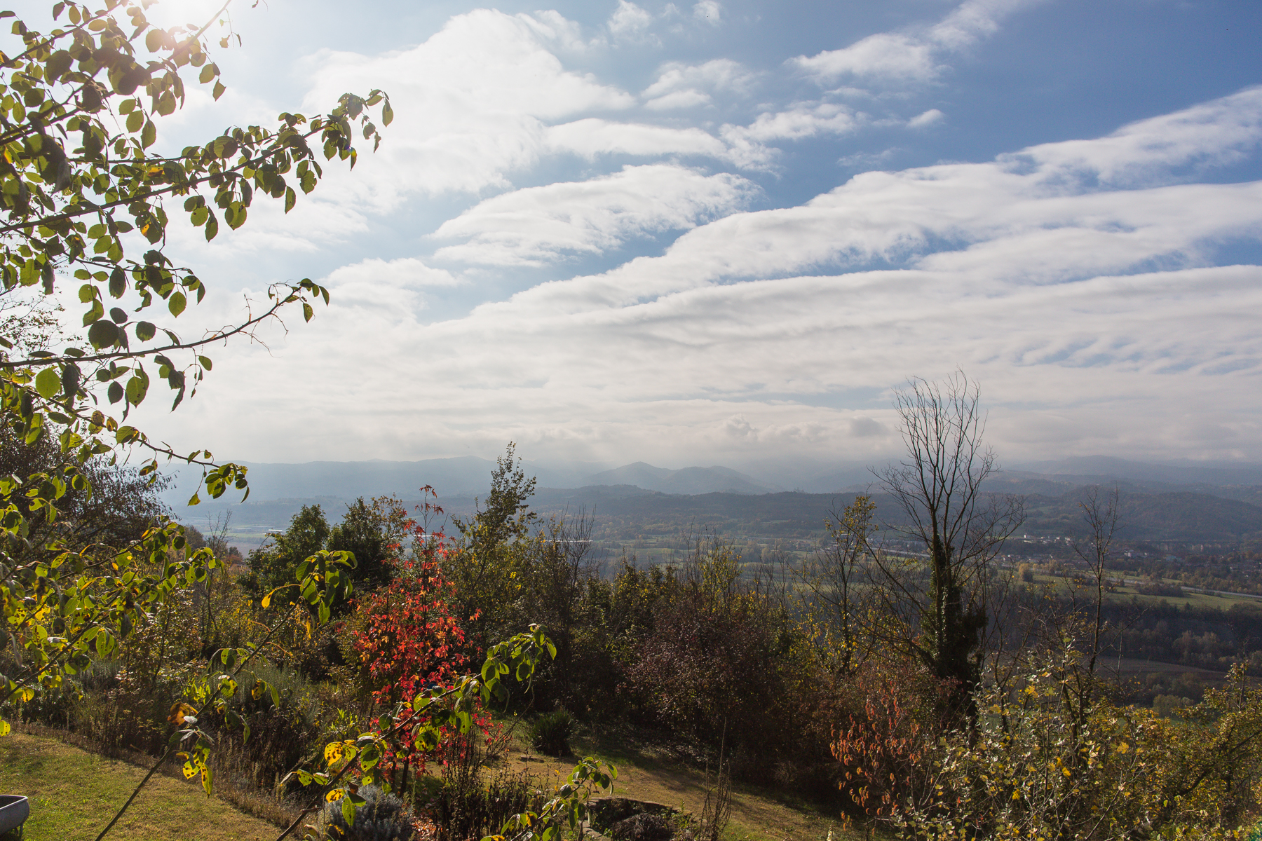 Additional photo for property listing at Cozy Country Home overlooking the Langhe Località Monaca Castellino Tanaro, Cuneo 12060 Italy