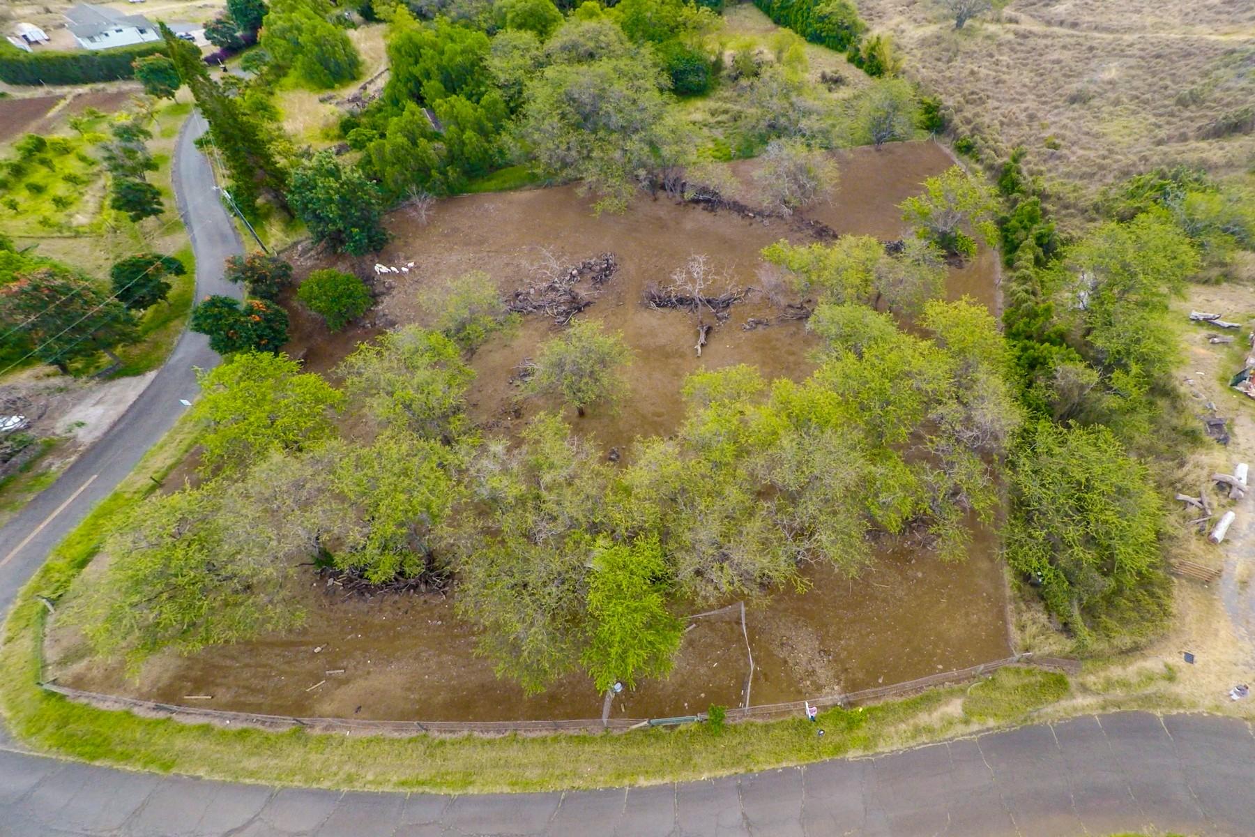 Đất đai vì Bán tại Prime 2 Acres In Lower Kula 0 Naalae Road Kula, Hawaii, 96790 Hoa Kỳ