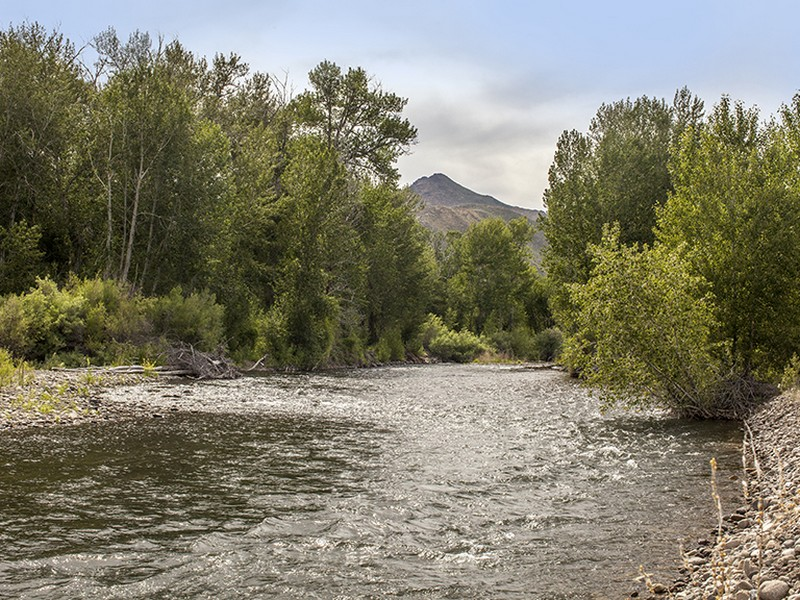 Additional photo for property listing at 21 Acres on the Big Wood River 100 Trout Lane Bellevue, Idaho 83313 United States