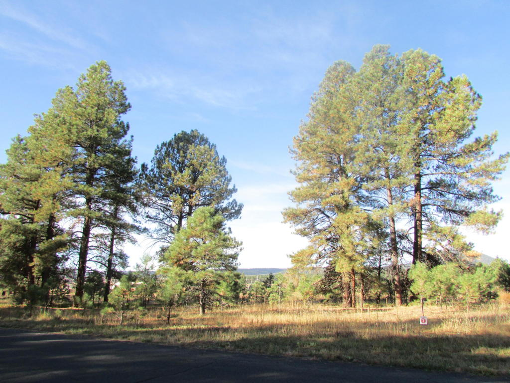 Land for Sale at Spectacular Views 8655 N Snow Bowl Ranch RD Flagstaff, Arizona 86001 United States