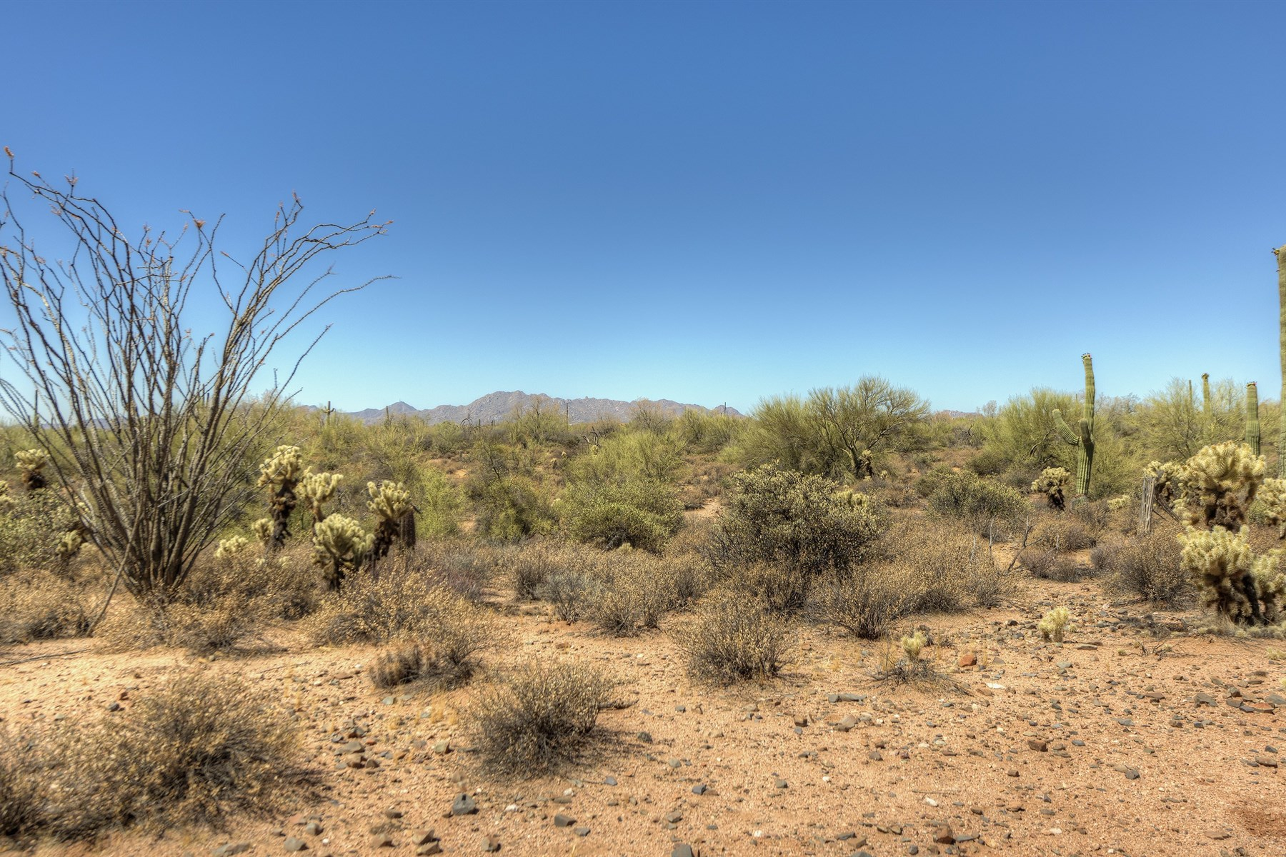 Terreno para Venda às Wonderful 9.99 acre parcel with endless views 17400 E Lowden Rd Scottsdale, Arizona, 85262 Estados Unidos