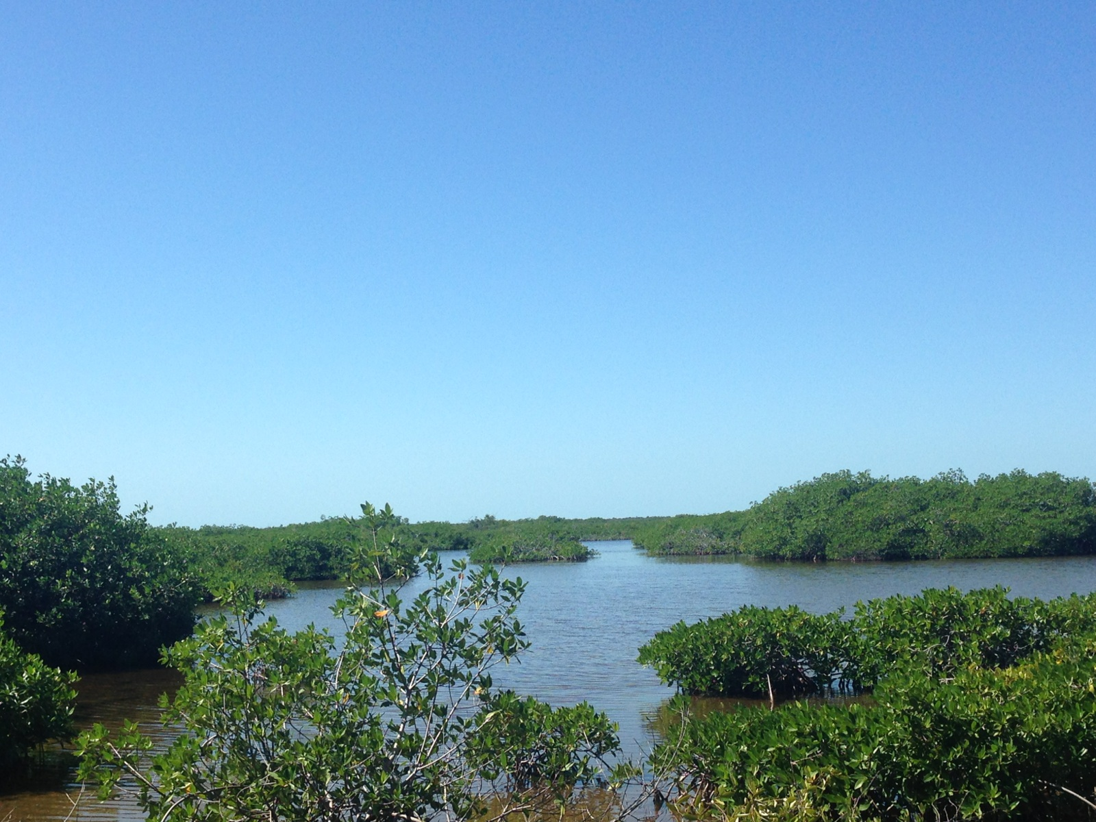 Land for Sale at Buena Vista Area San Pedro Town, Ambergris Caye Belize