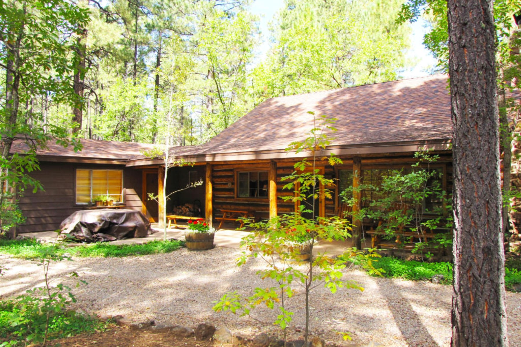 sales property at Charming Log Cabin in Pinetop