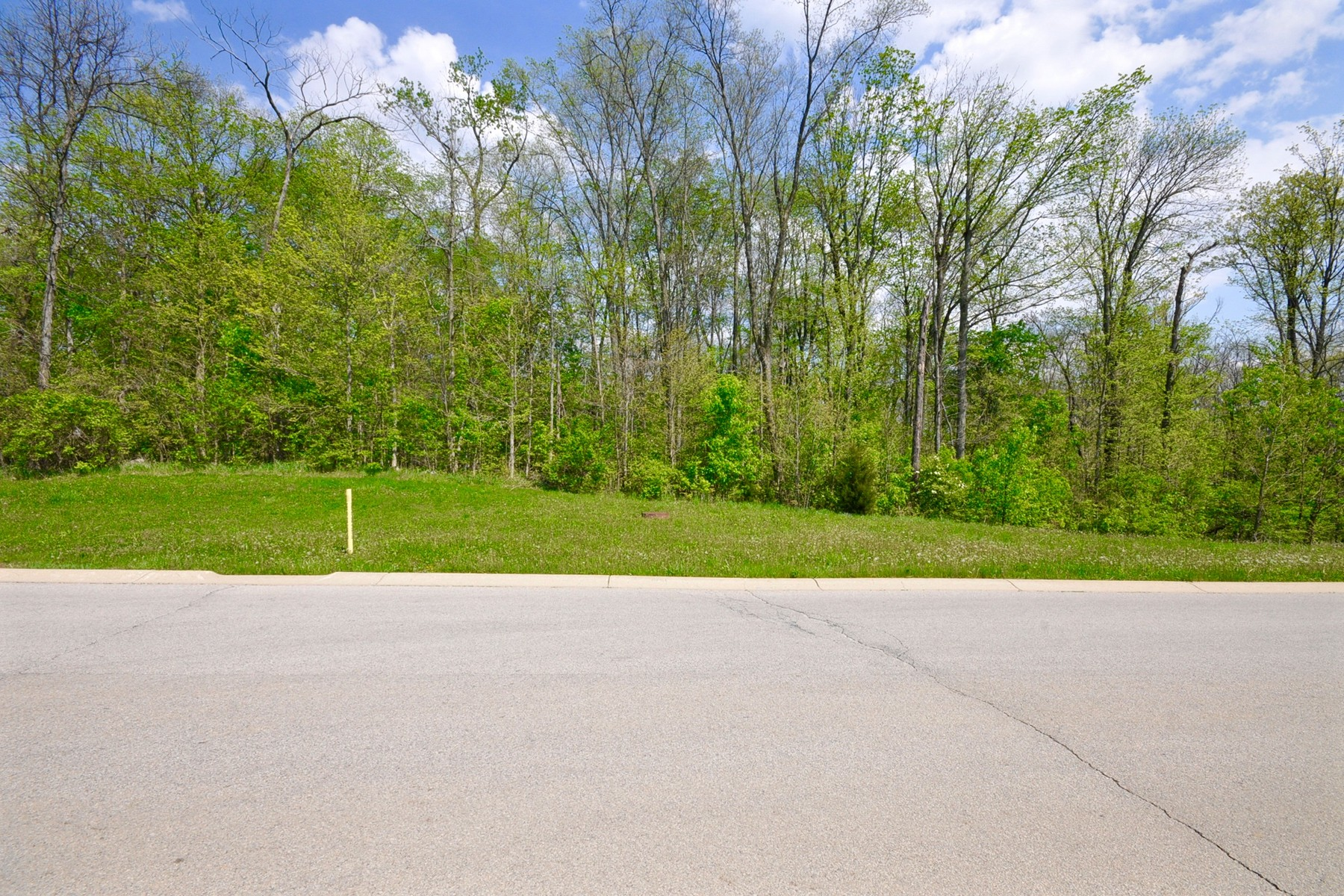 Terreno por un Venta en Beautiful 3.73 Acre Lot 11559 Willow Springs Drive Zionsville, Indiana 46077 Estados Unidos