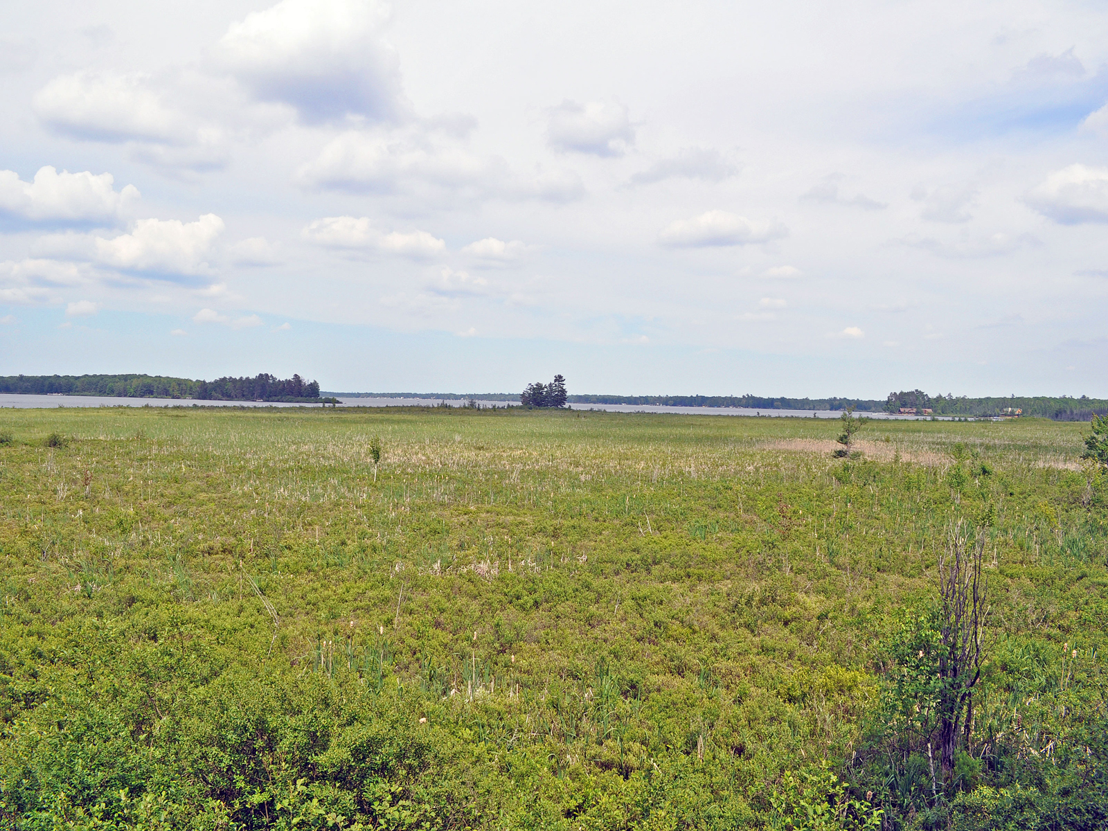 Land for Sale at Richfield Township 000 Jennifer Lane St. Helen, Michigan 48656 United States