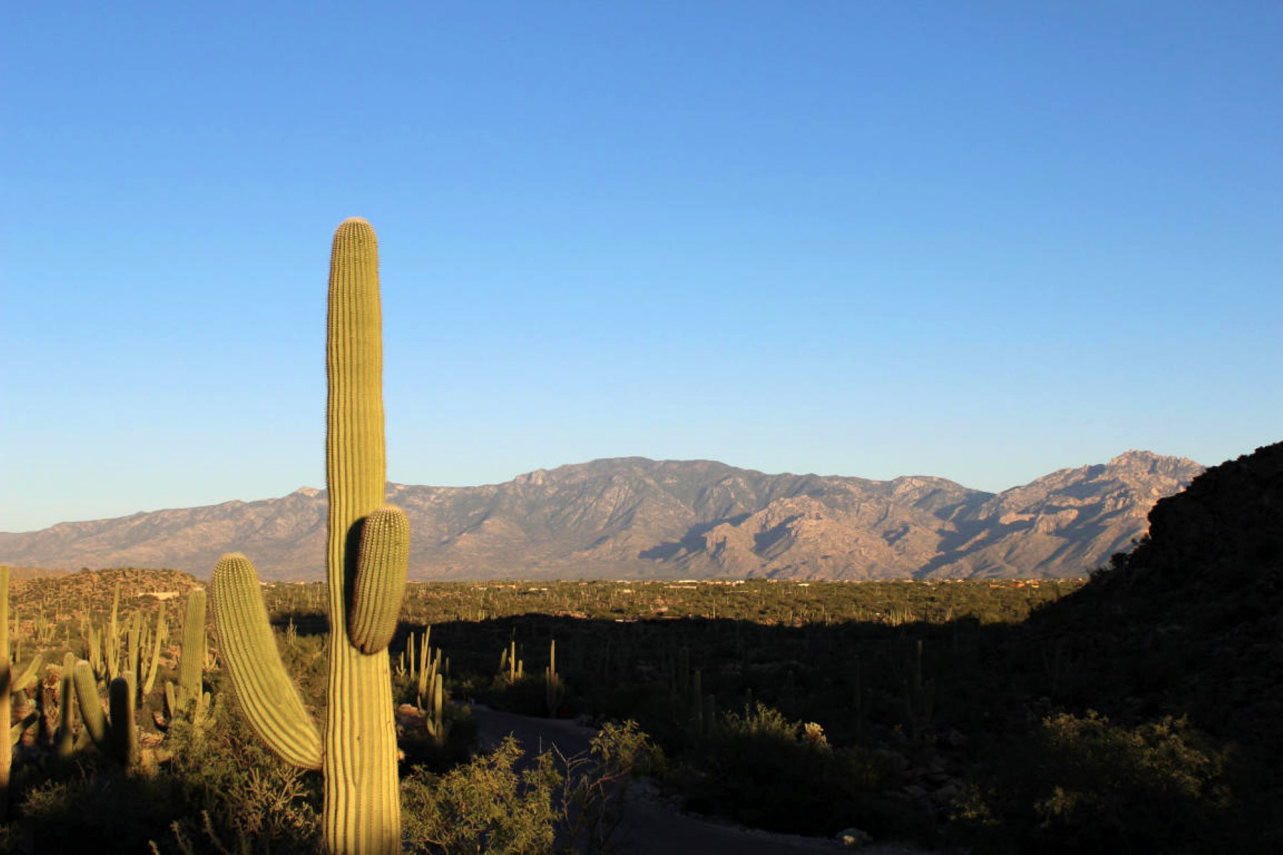 Property For Sale at Saguaro Ranch Custom Home Site With Incredible Views