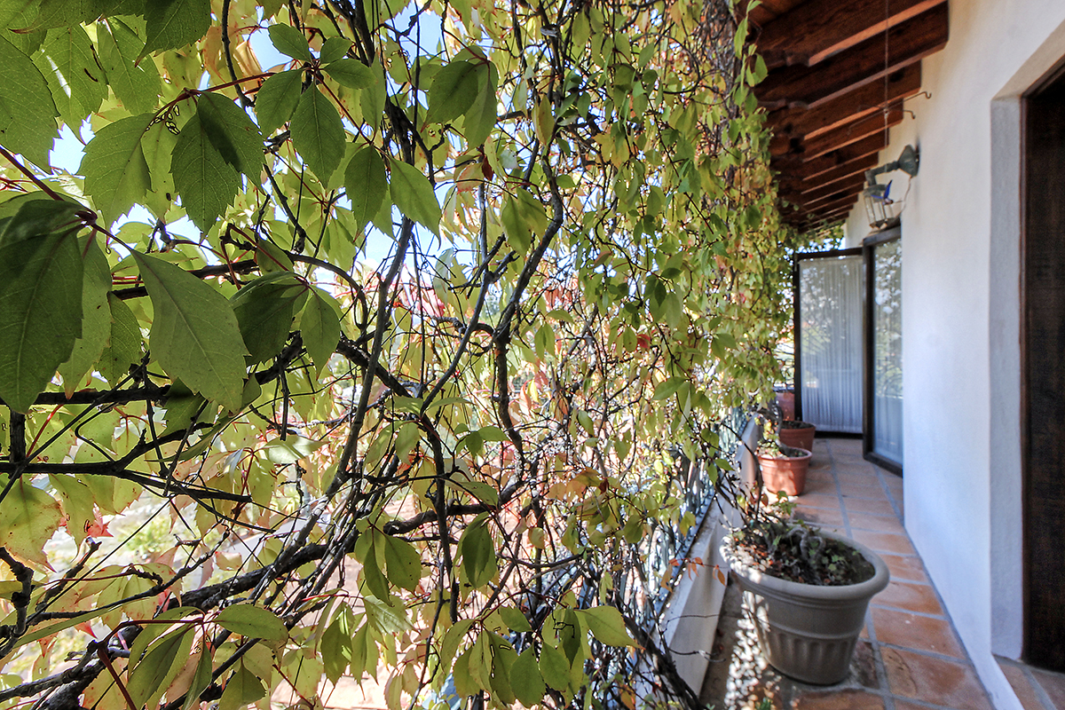 Additional photo for property listing at Vista Hermosa Vista Hermosa #1 San Miguel De Allende, Guanajuato 37790 México
