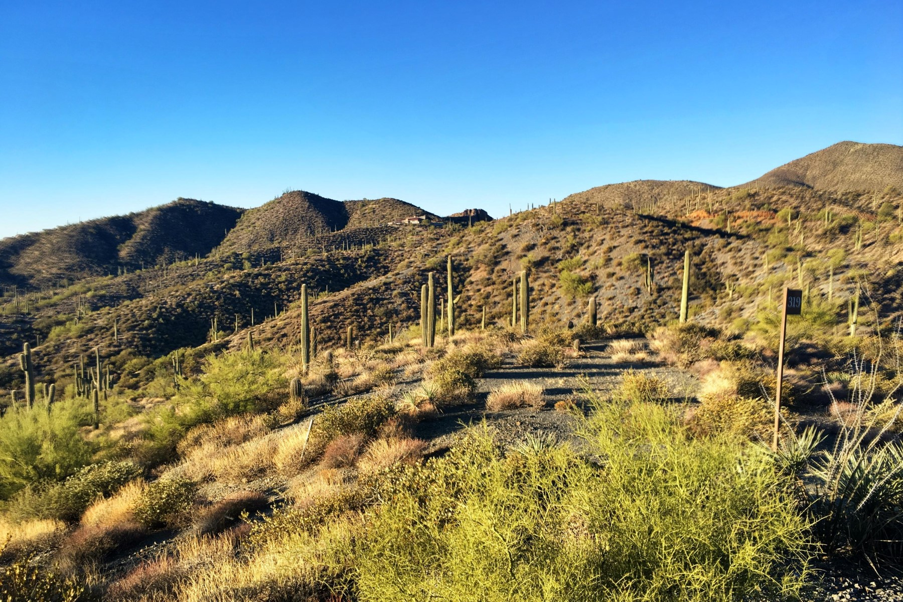 Terrain pour l Vente à Elevated and private view lot located in Desert Mountain 42558 N Chiricahua Pass #319 Scottsdale, Arizona, 85262 États-Unis