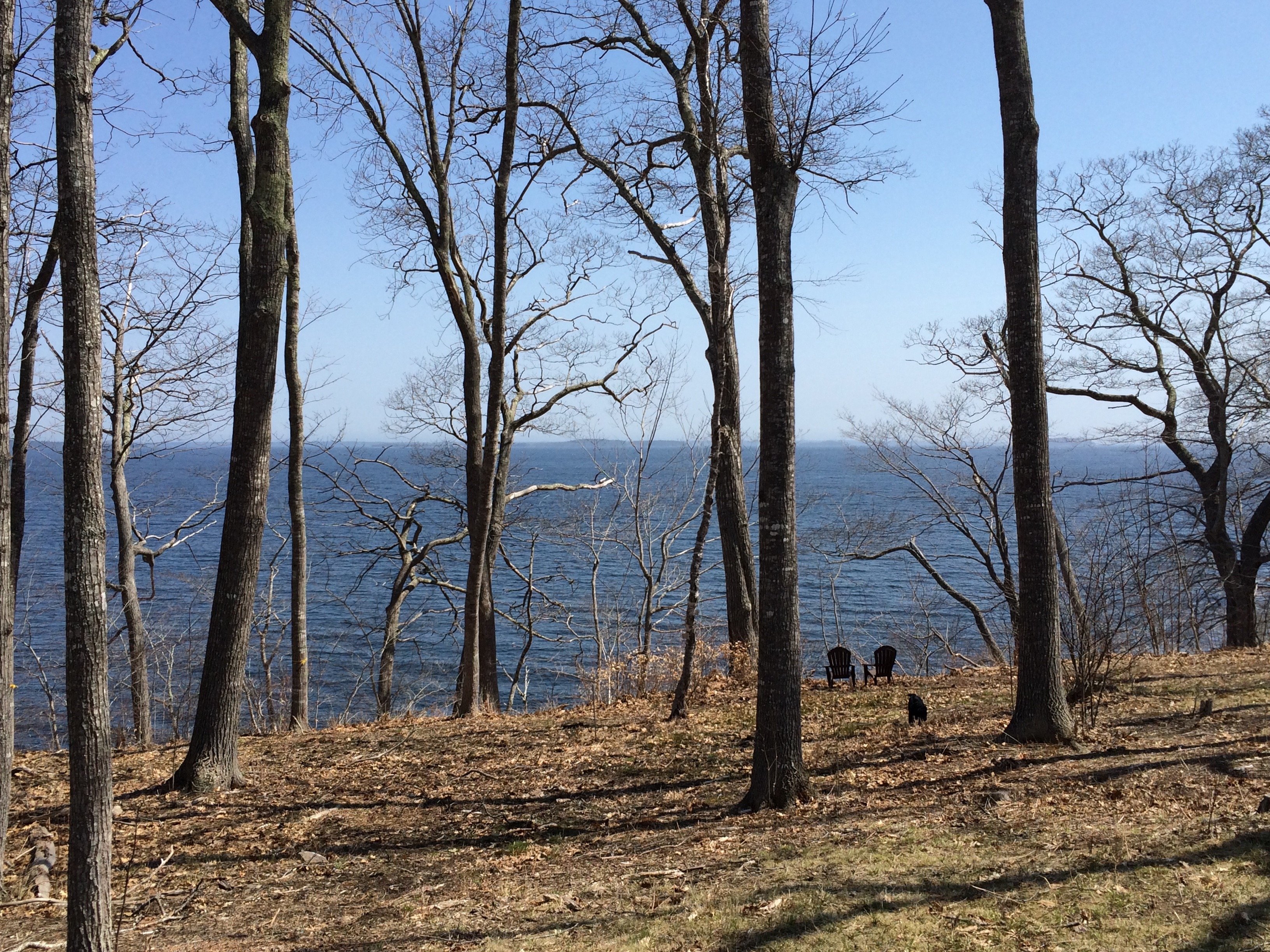 Land for Sale at Camden Road (Land Lot) 0 Belfast Road Camden, Maine 04843 United States