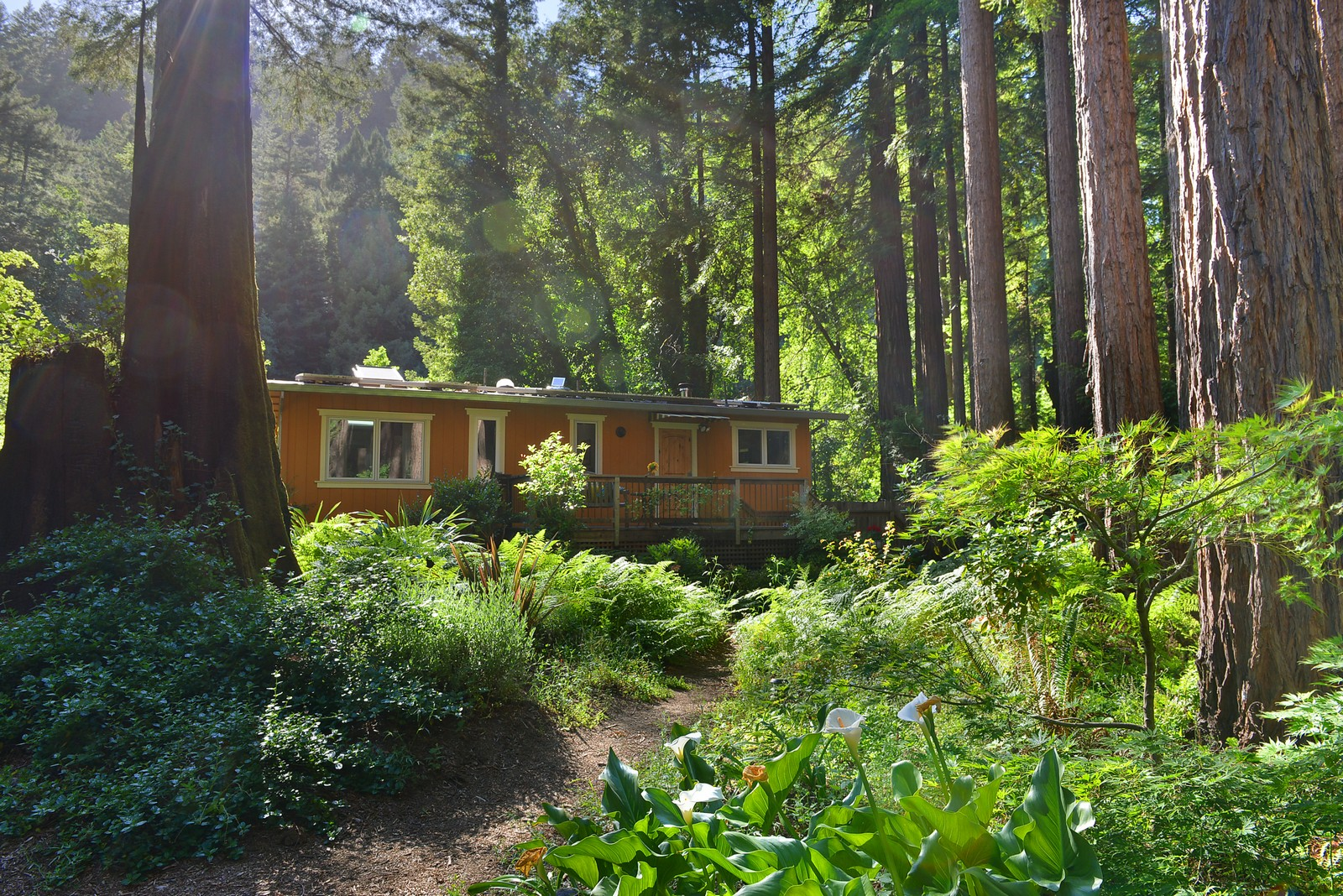 Single Family Home for Sale at Heronwood 1745 Austin Creek Road Cazadero, California, 95421 United States