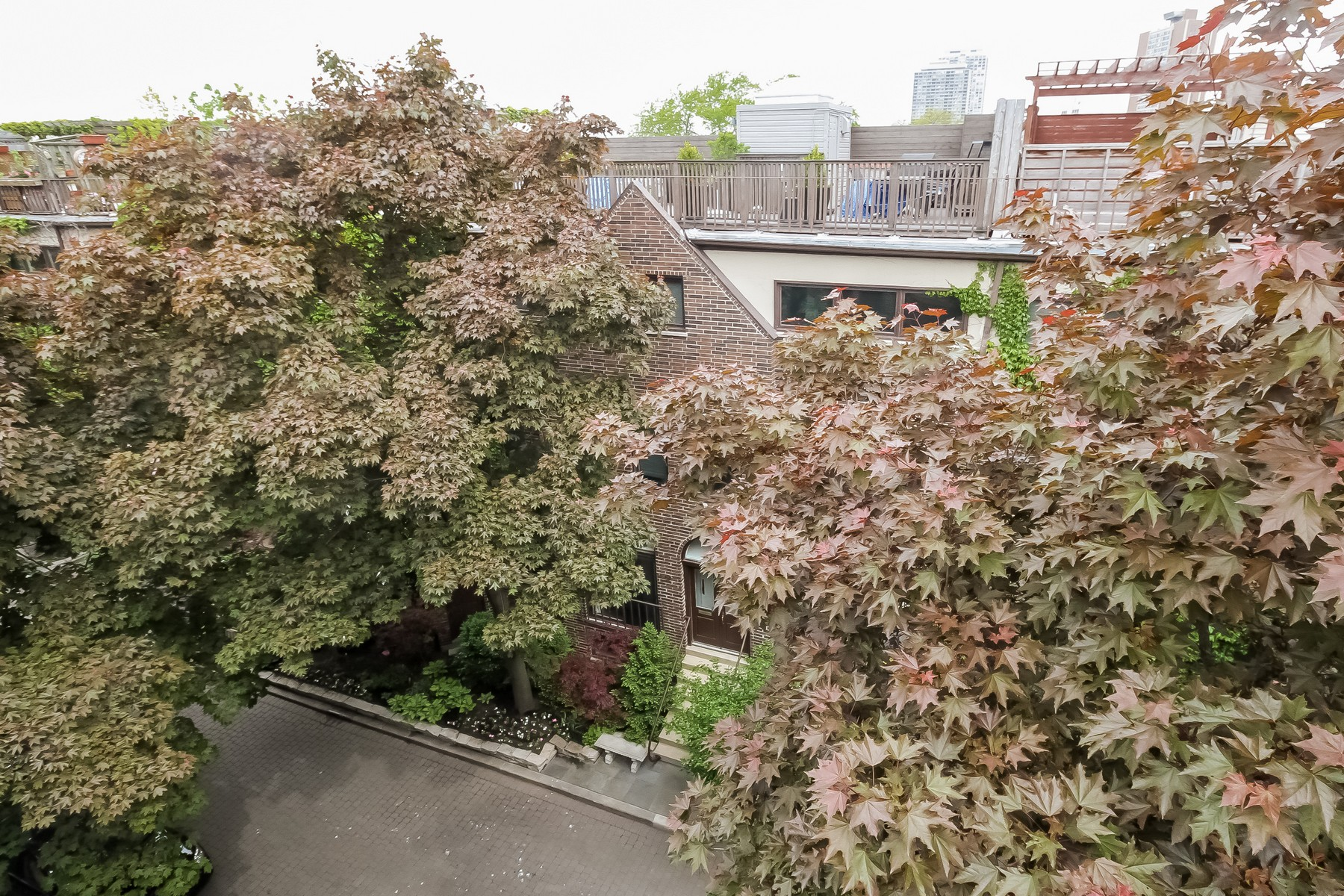 Additional photo for property listing at Superb Rental in Old Town 229 W Concord Lane Chicago, Illinois 60614 United States