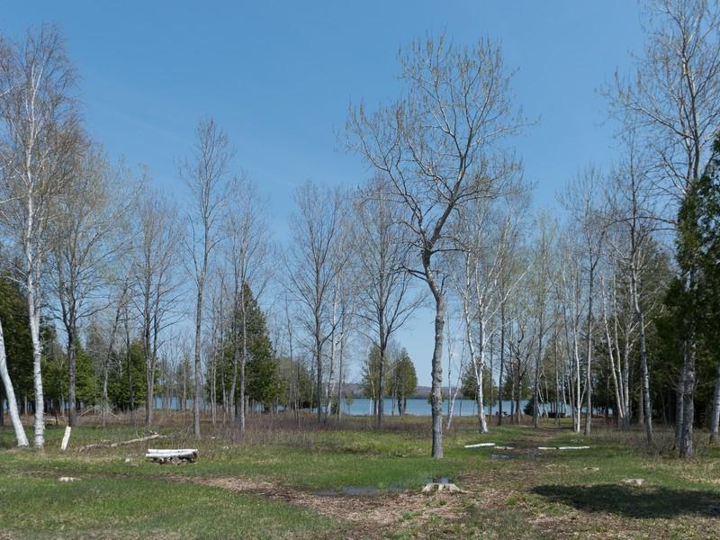 Land for Sale at Larks Landing Tremolo Point Units 2-12 Pellston, Michigan 49769 United States