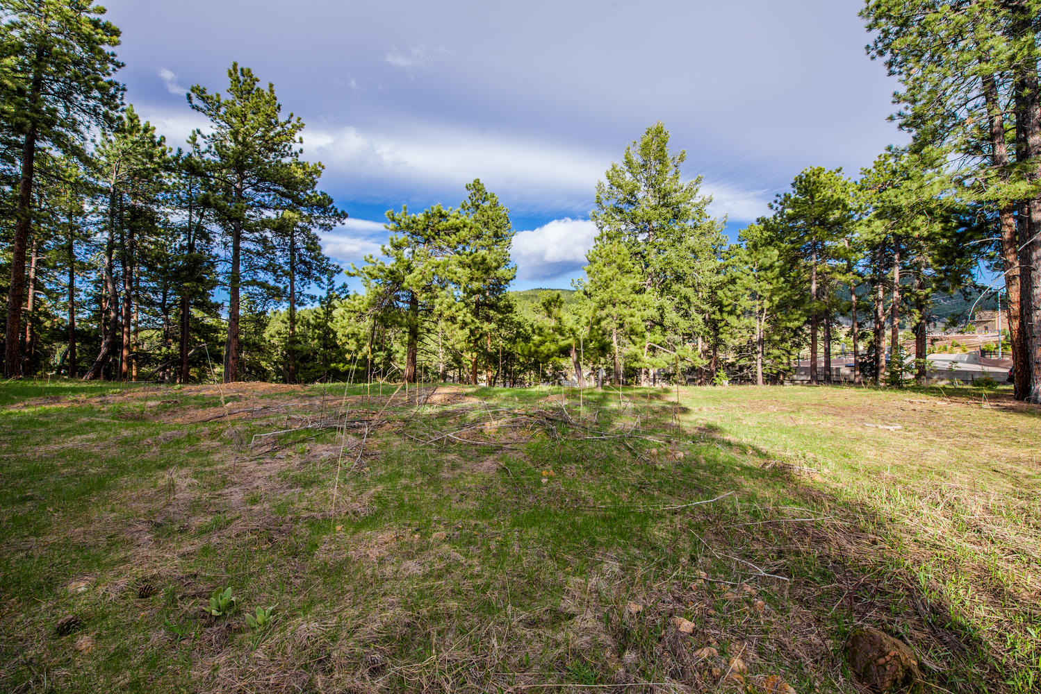 Land for Active at 25.10 Acres of Planned Development 10250 Highway 73 Conifer, Colorado 80433 United States
