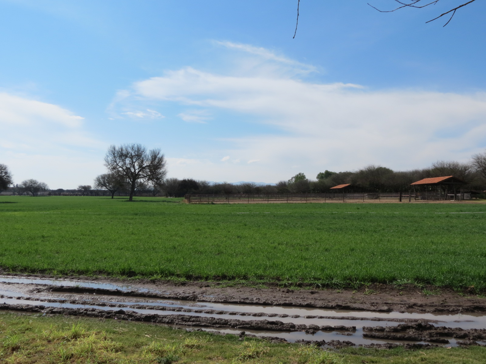 Additional photo for property listing at Rancho de Los Charcos Country Property, San Miguel De Allende, Guanajuato Mexico