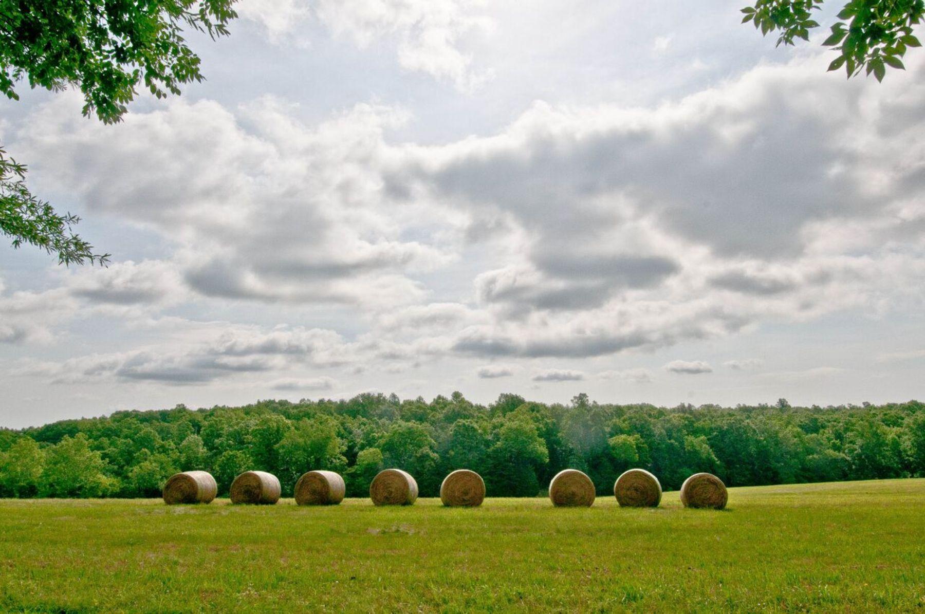 農場/牧場 / プランテーション のために 売買 アット Rock Castle Creek 8371 Langhorne Road Scottsville, バージニア, 24590 アメリカ合衆国