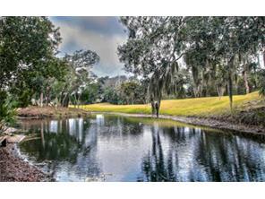 Nhà ở một gia đình vì Bán tại 11 Little Dunes Amelia Island, Florida, 32034 Hoa Kỳ