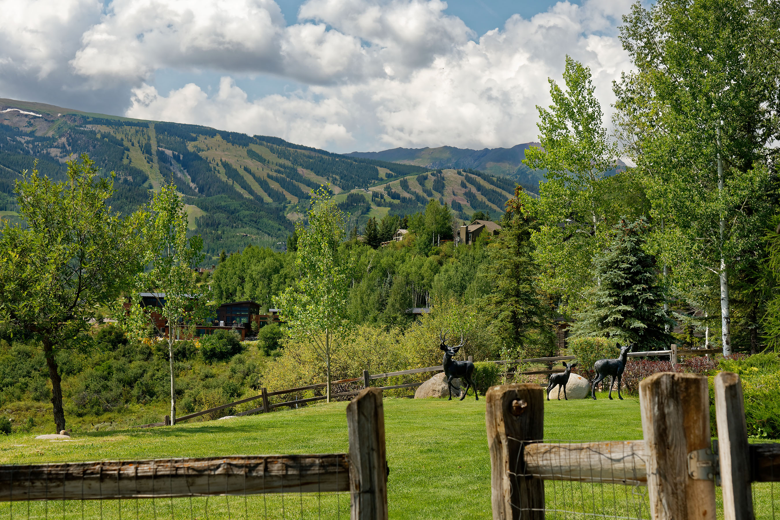 Single Family Home for Sale at Wildoak Unit One Lot 2 446 Oak Ridge Road Snowmass Village, Colorado, 81615 United States