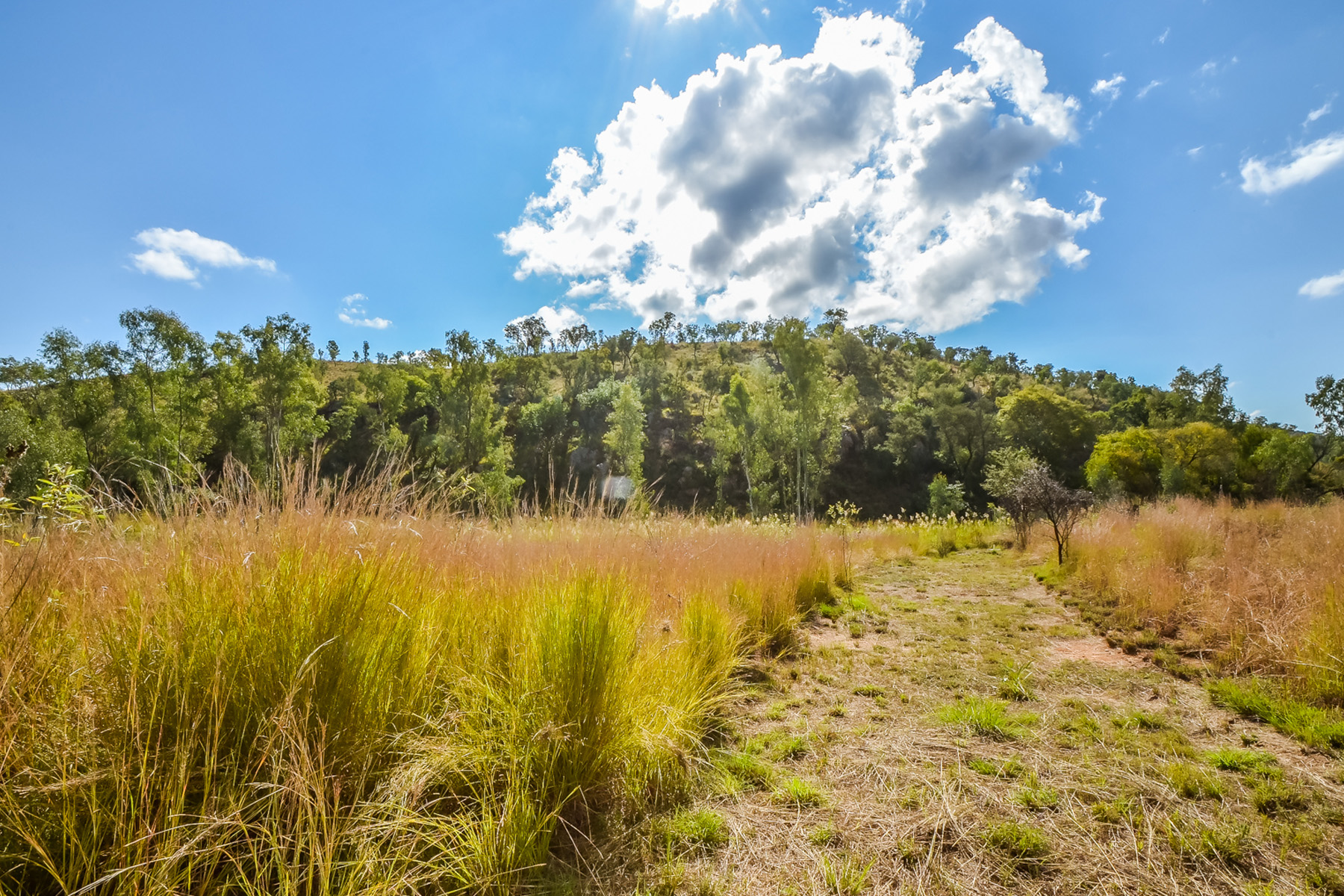 Land for Sale at Hot Spring for sale in Mookghopong Other South Africa, Other Areas In South Africa 0560 South Africa