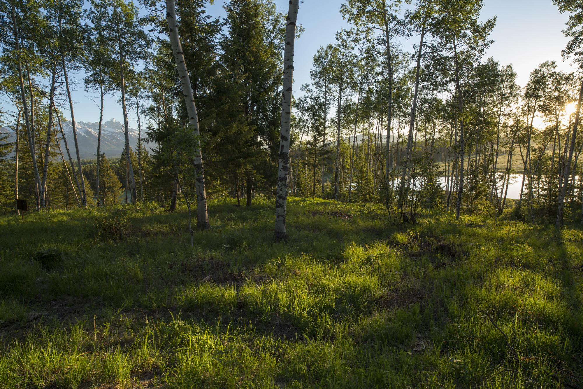 Land for Sale at Bar BC Ranch 5 935 W Bar BC Ranch Rd North Jackson Hole, Wyoming, 83001 Jackson Hole, United States