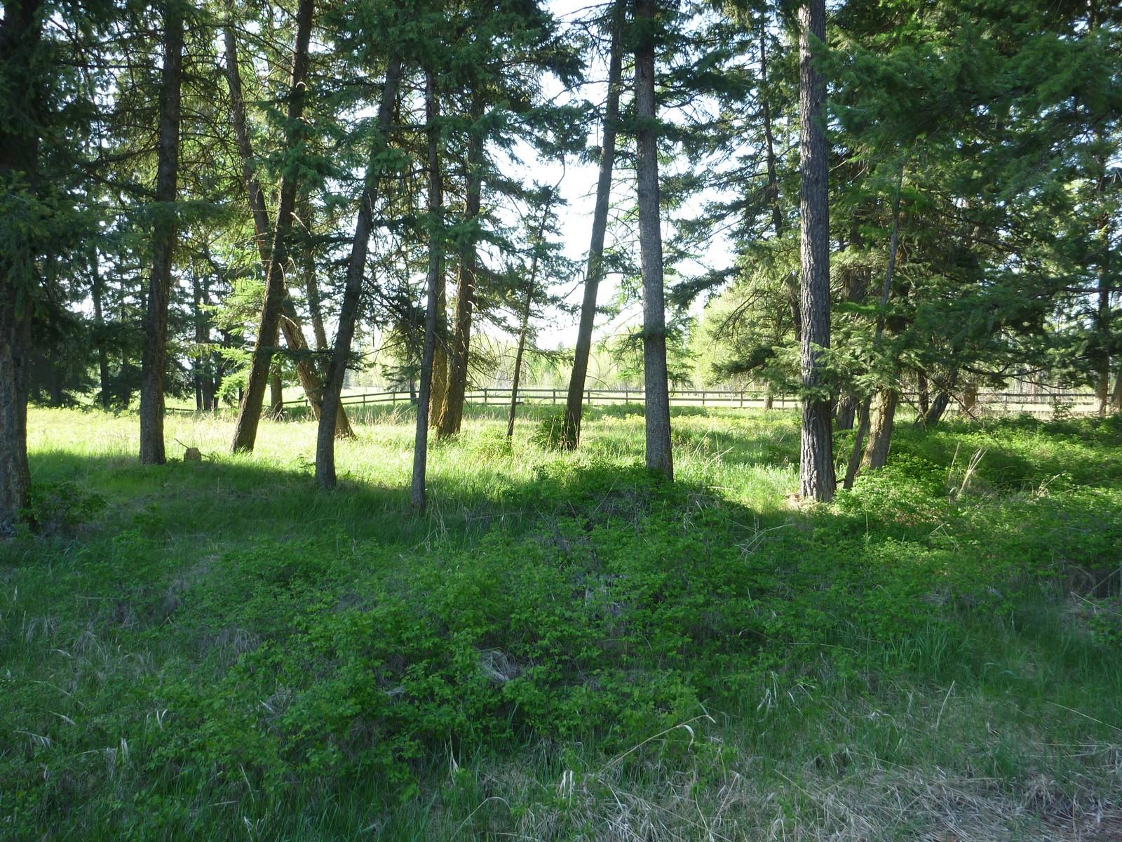 Земля для того Продажа на Glacier Ranch 501 Soaring Pines Trail Lot 84 Kalispell, Монтана 59901 Соединенные Штаты